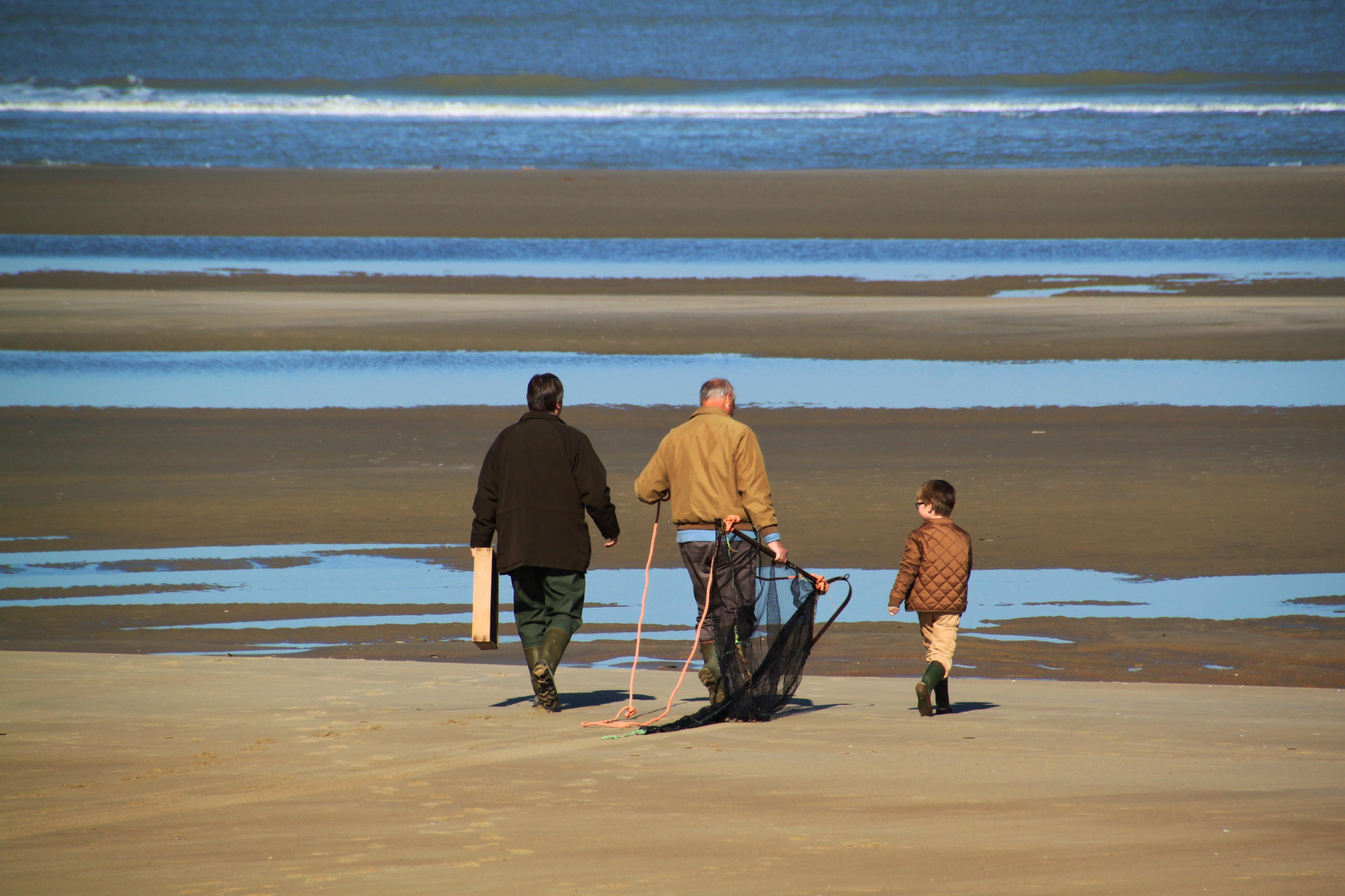Family, Activity, Beach, Flow, Sea, HQ Photo