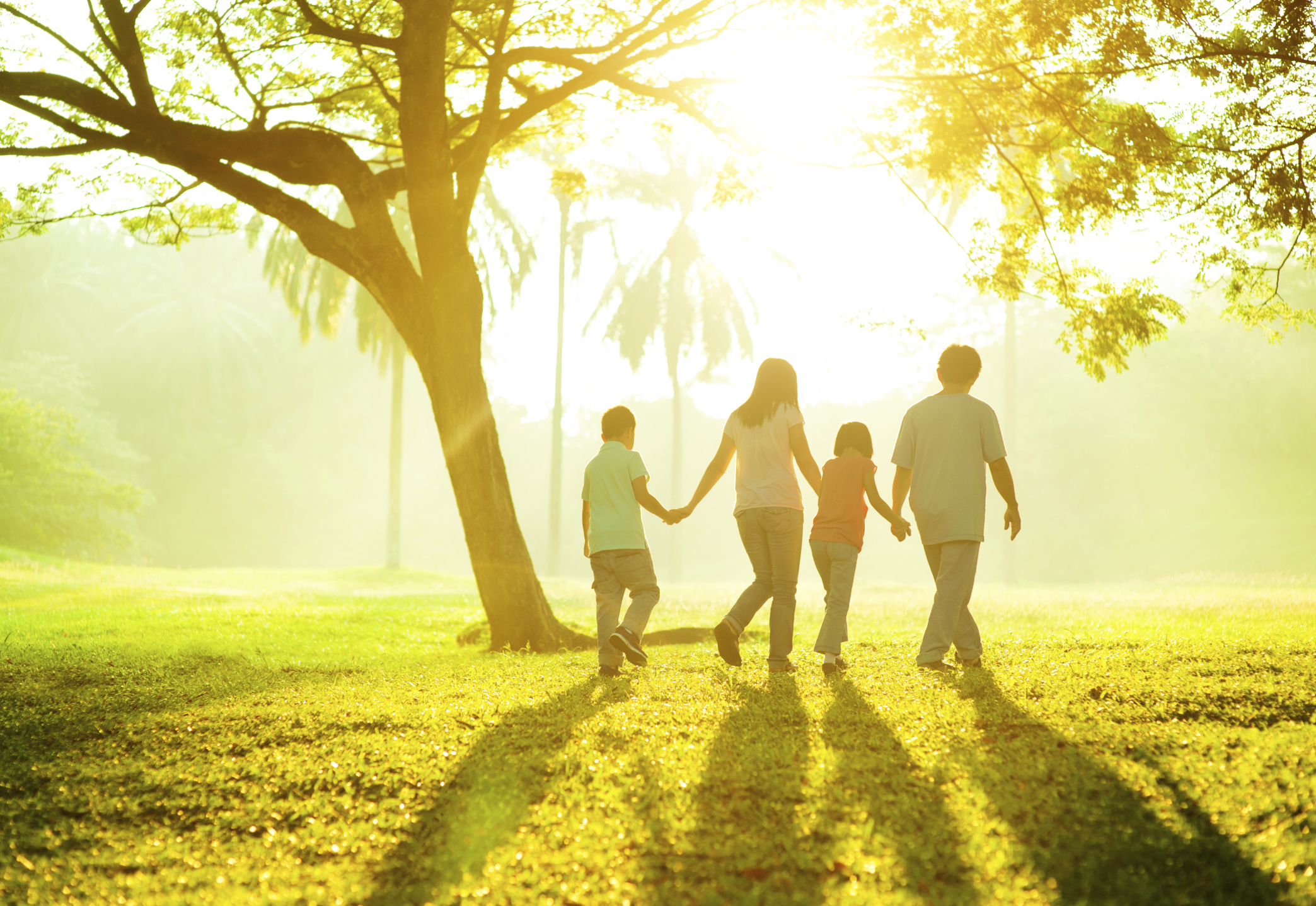 TEST: Interacting with your family | Psychologies