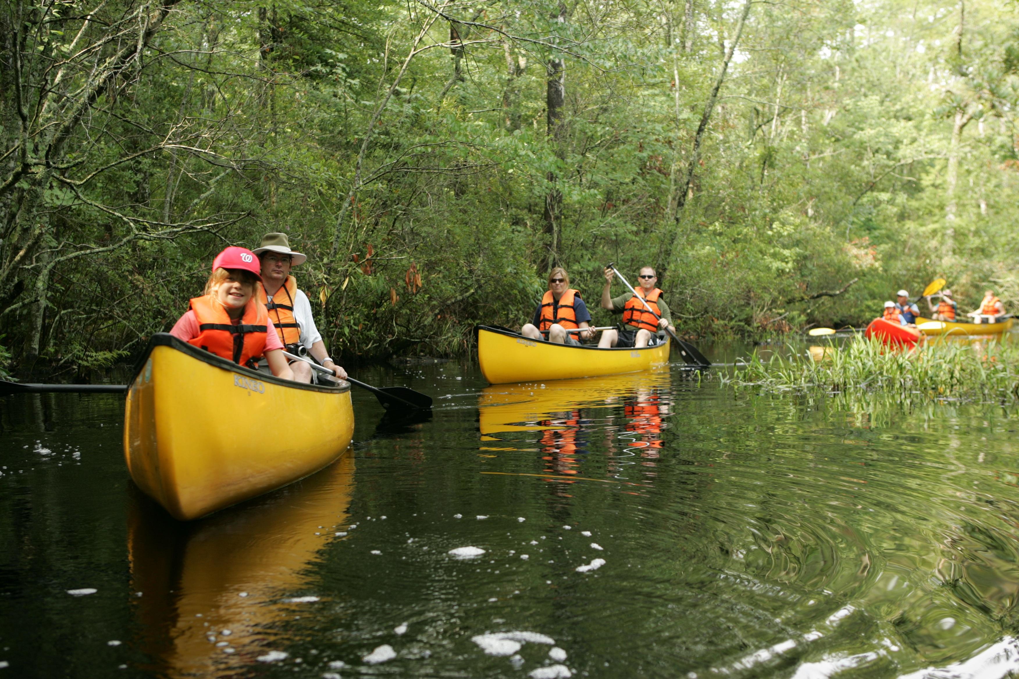 Family Canoeing, Activity, Canoe, Canoeing, Family, HQ Photo