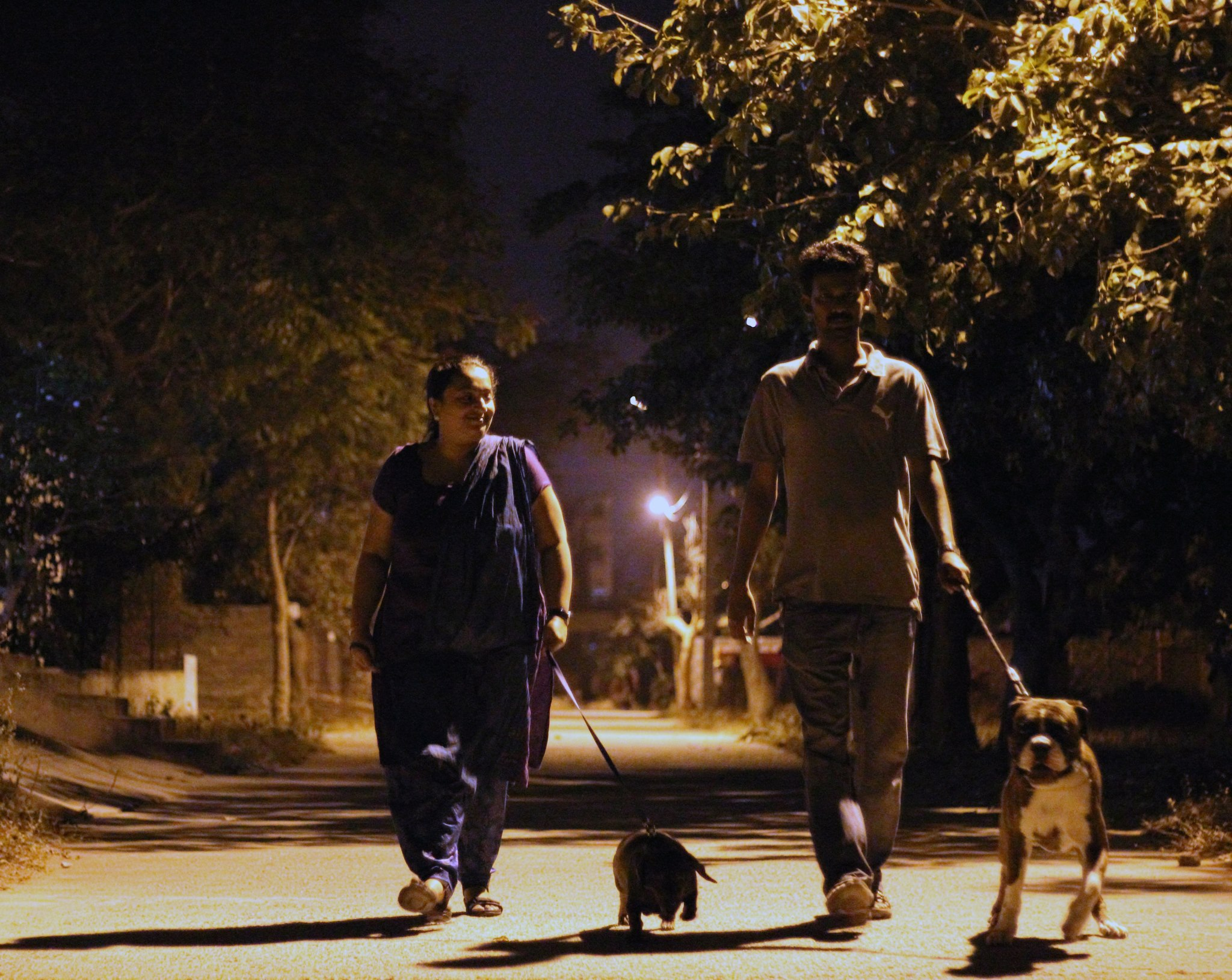 My family on an evening walk | GUNDA the Boxer | Pinterest