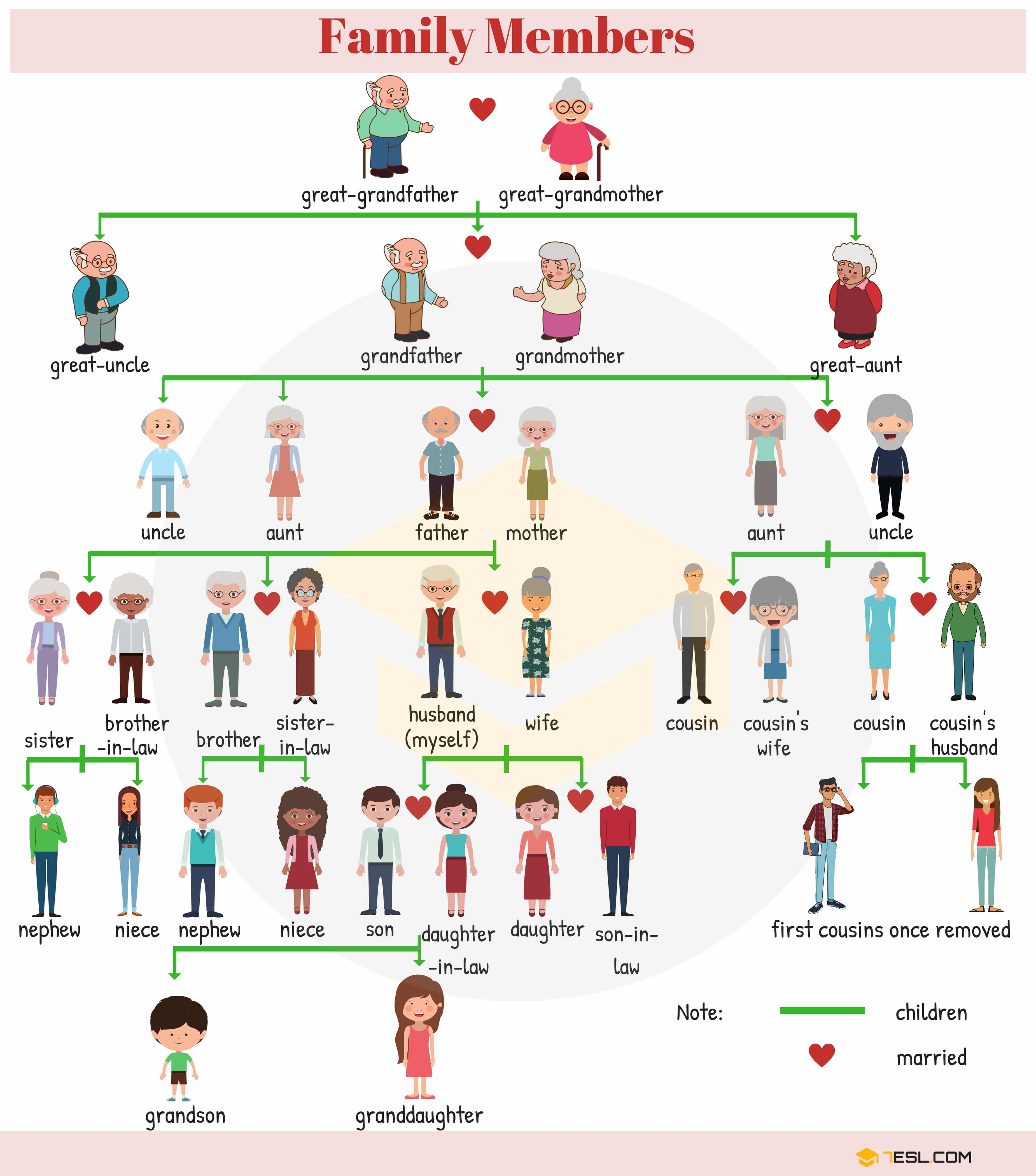 Members of the Family Vocabulary | Family Members Tree - 7 E S L