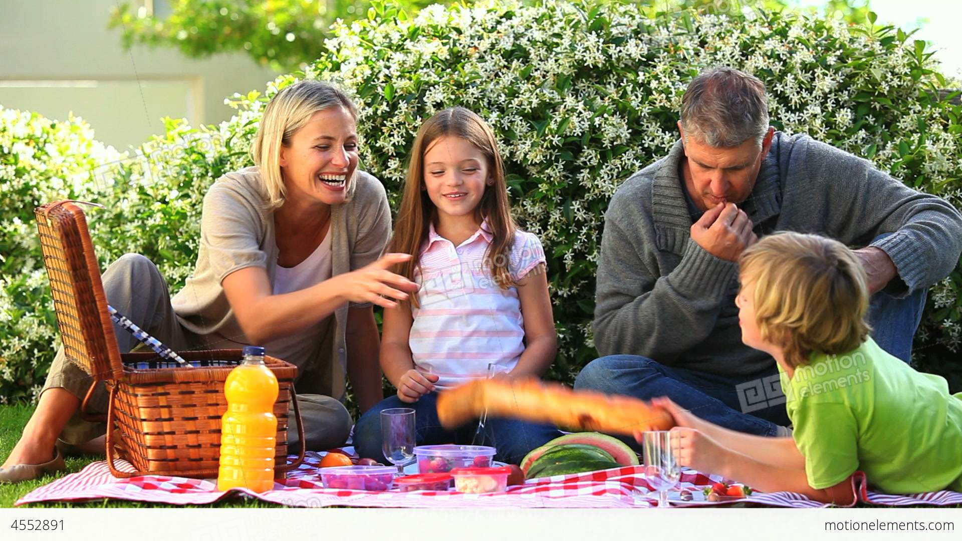 Family Picnic On Lawn Stock video footage | 4552891