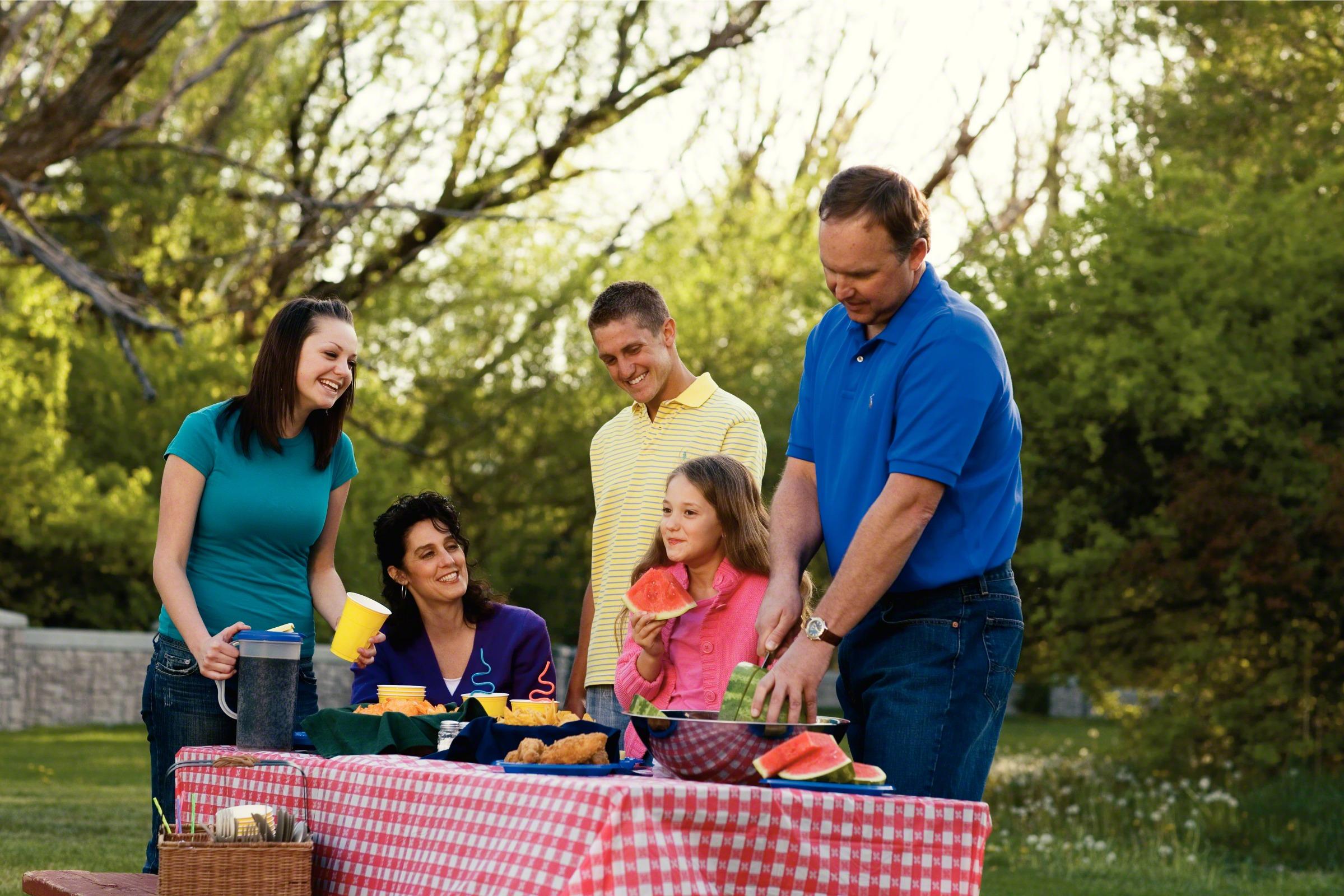 Family picnic photo