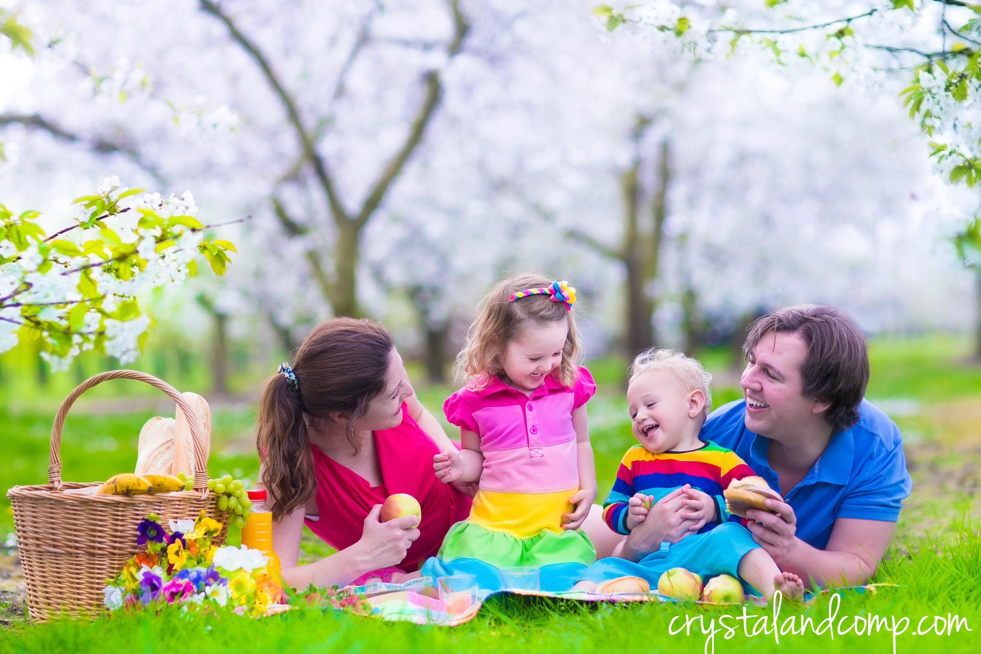 25 Family Picnic Ideas You Will Love | CrystalandComp.com