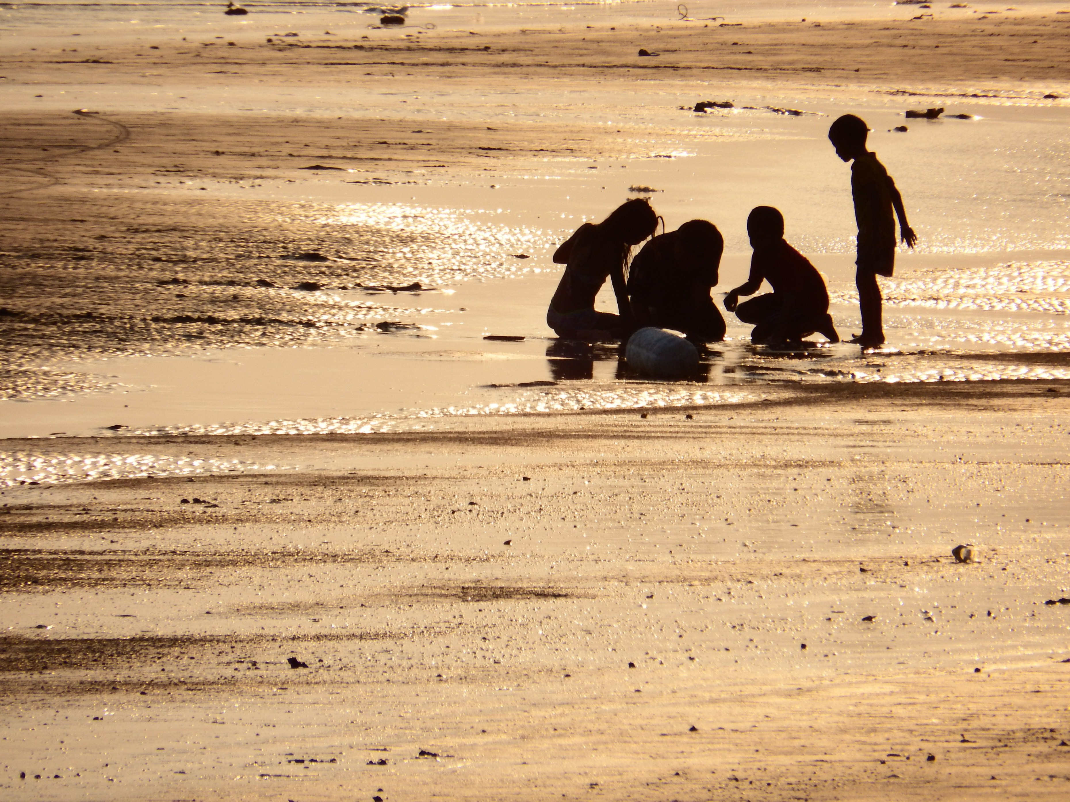 Family Plays on the Beach Silhouette, Beach, People, Tropical, Sunny, HQ Photo