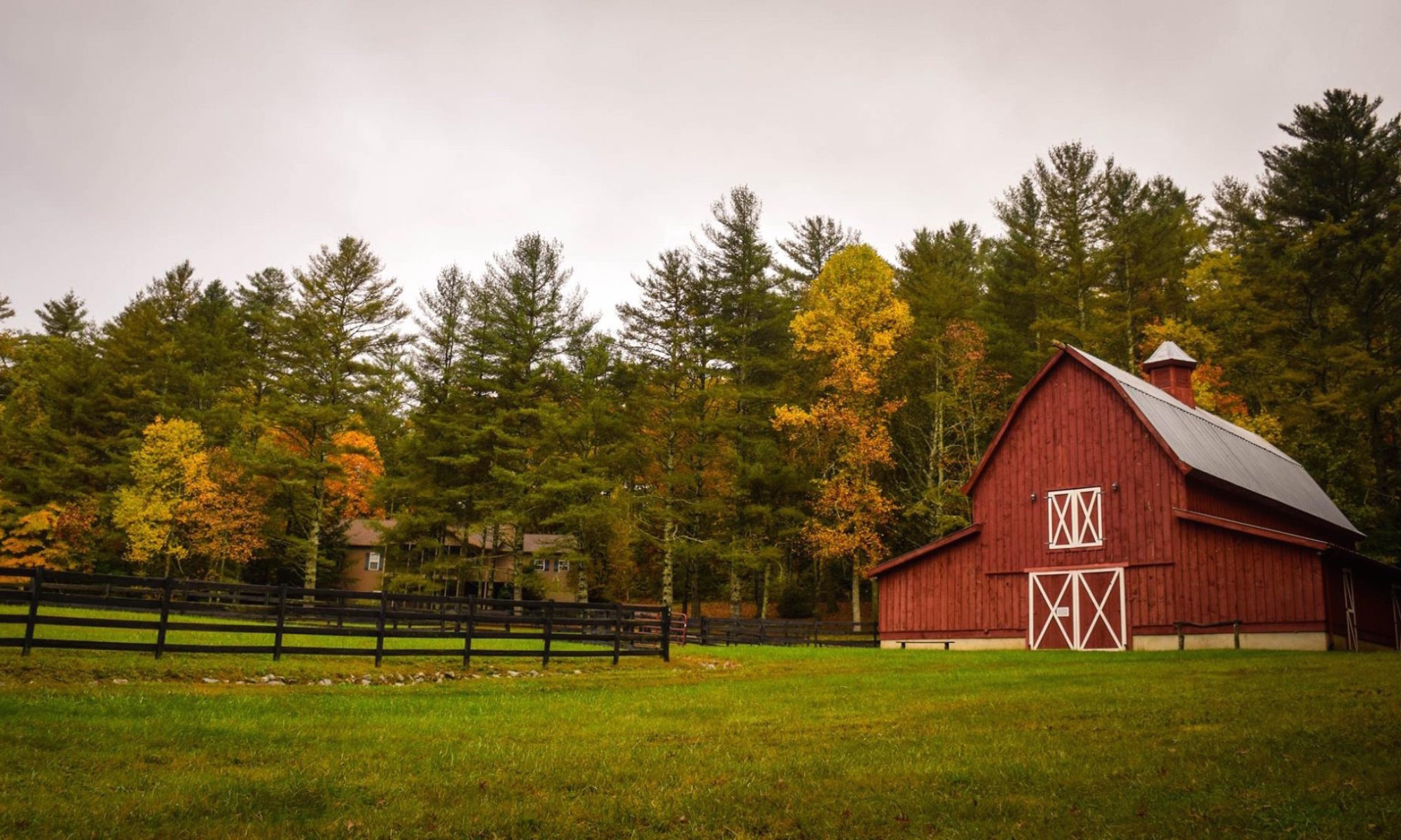 Food, Farm & Faith - Reflections on the intersection of these in my ...
