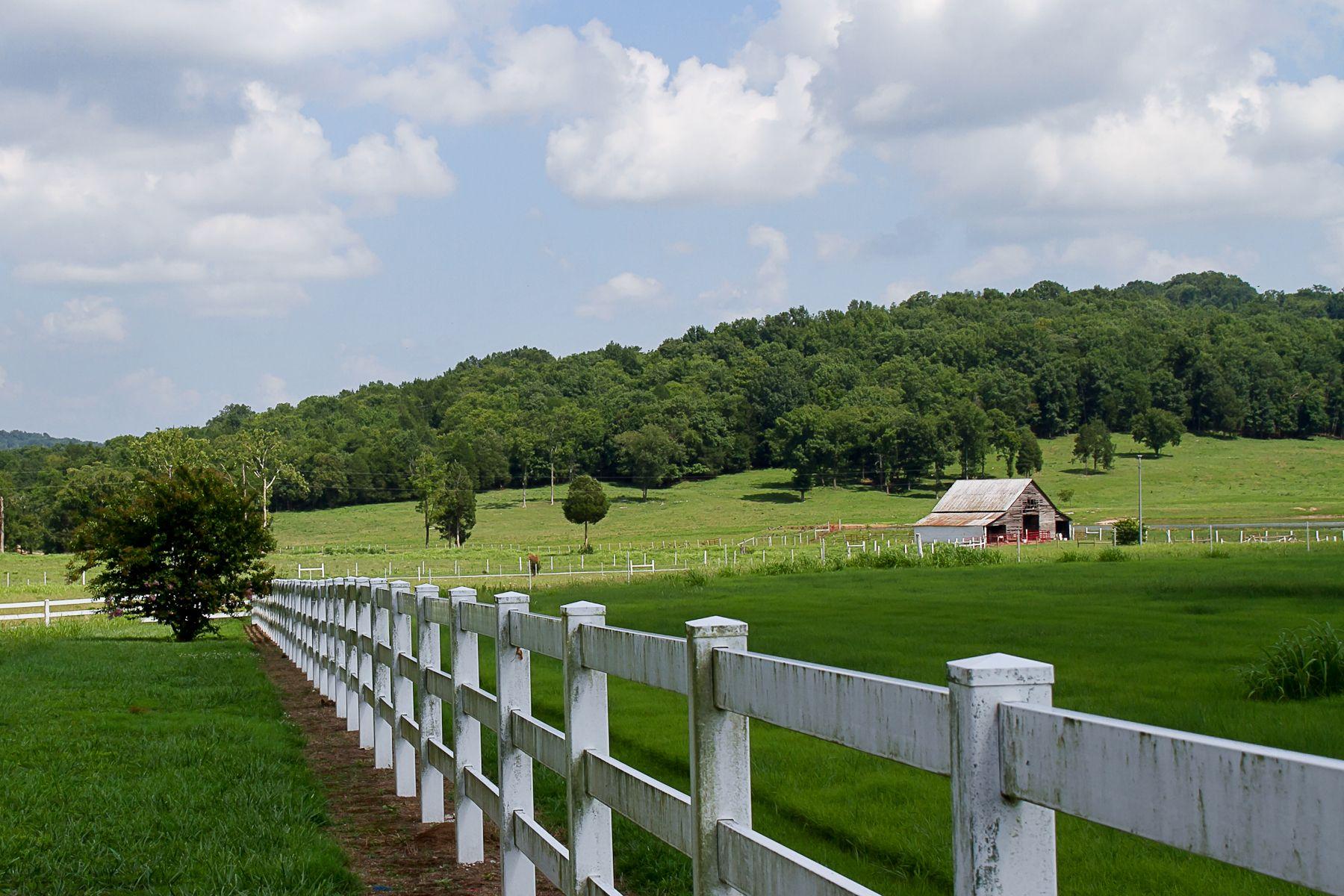 Tennessee Farm | Rose Street Reflections | Pinterest | Farming, East ...