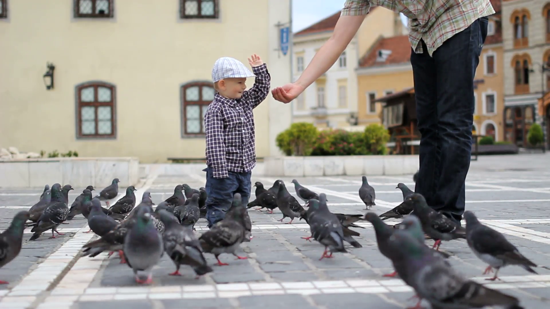 Cute baby boy take food from father hand and feed the pigeons, urban ...