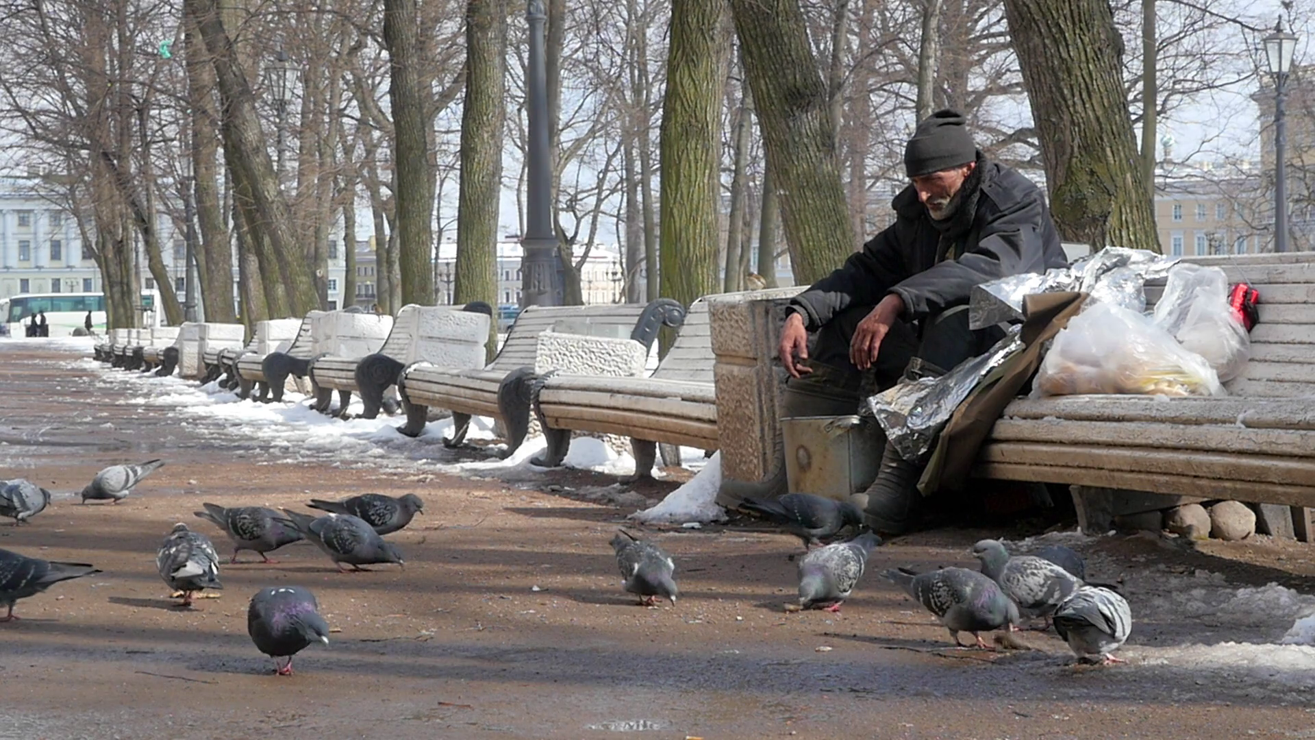 Poor man in the Park feeding the pigeons Stock Video Footage ...