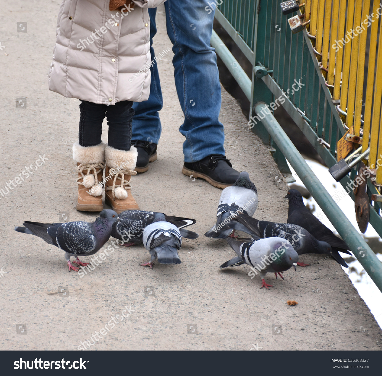 People Feeding Pigeons Park Stock Photo (Royalty Free) 636368327 ...