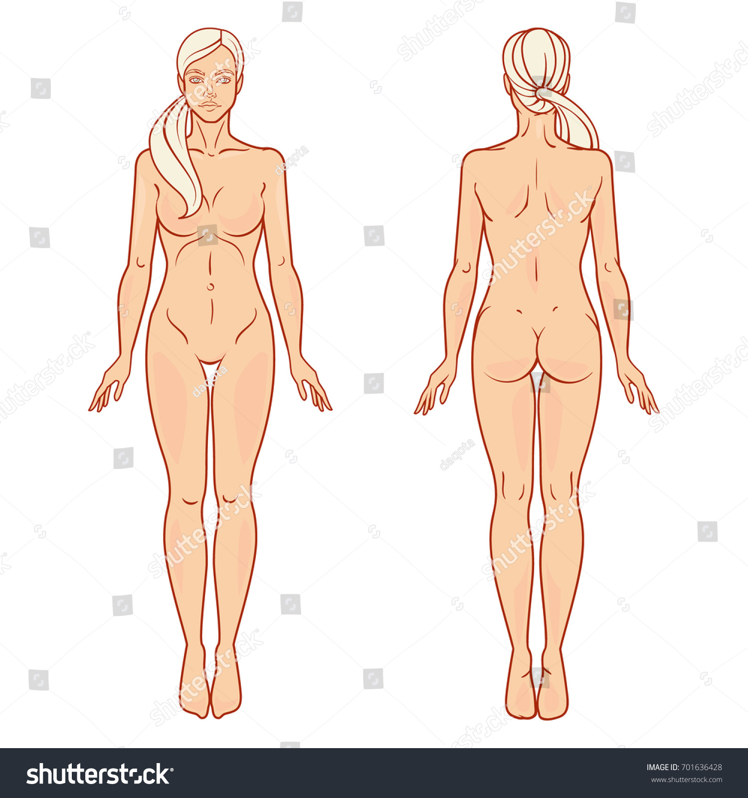 Female Body Front Back View Template Stock Vector 701636428 ...