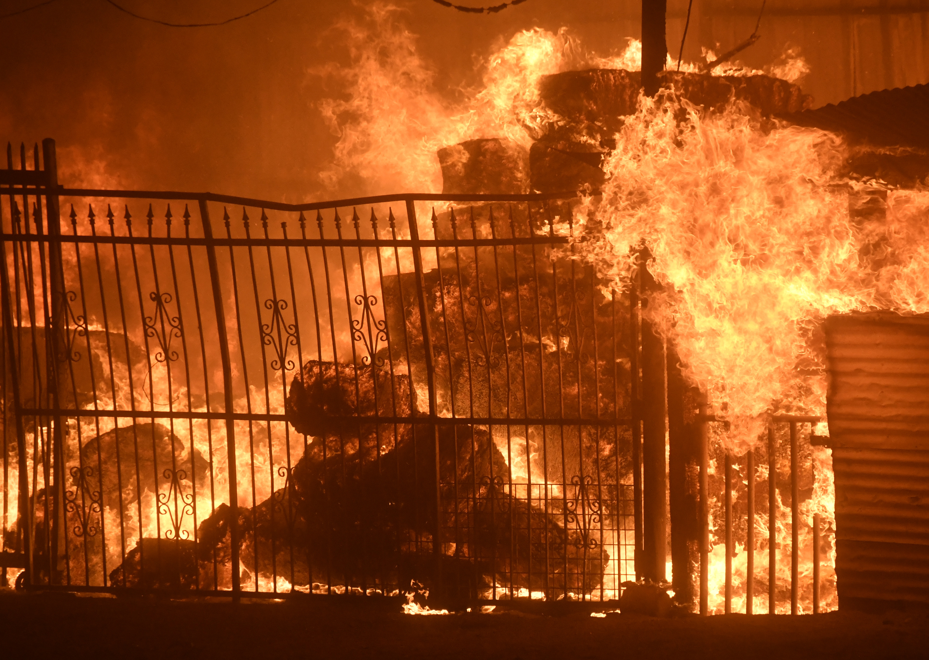 Creek fire near Sylmar burns dozens of homes, thousands evacuated ...