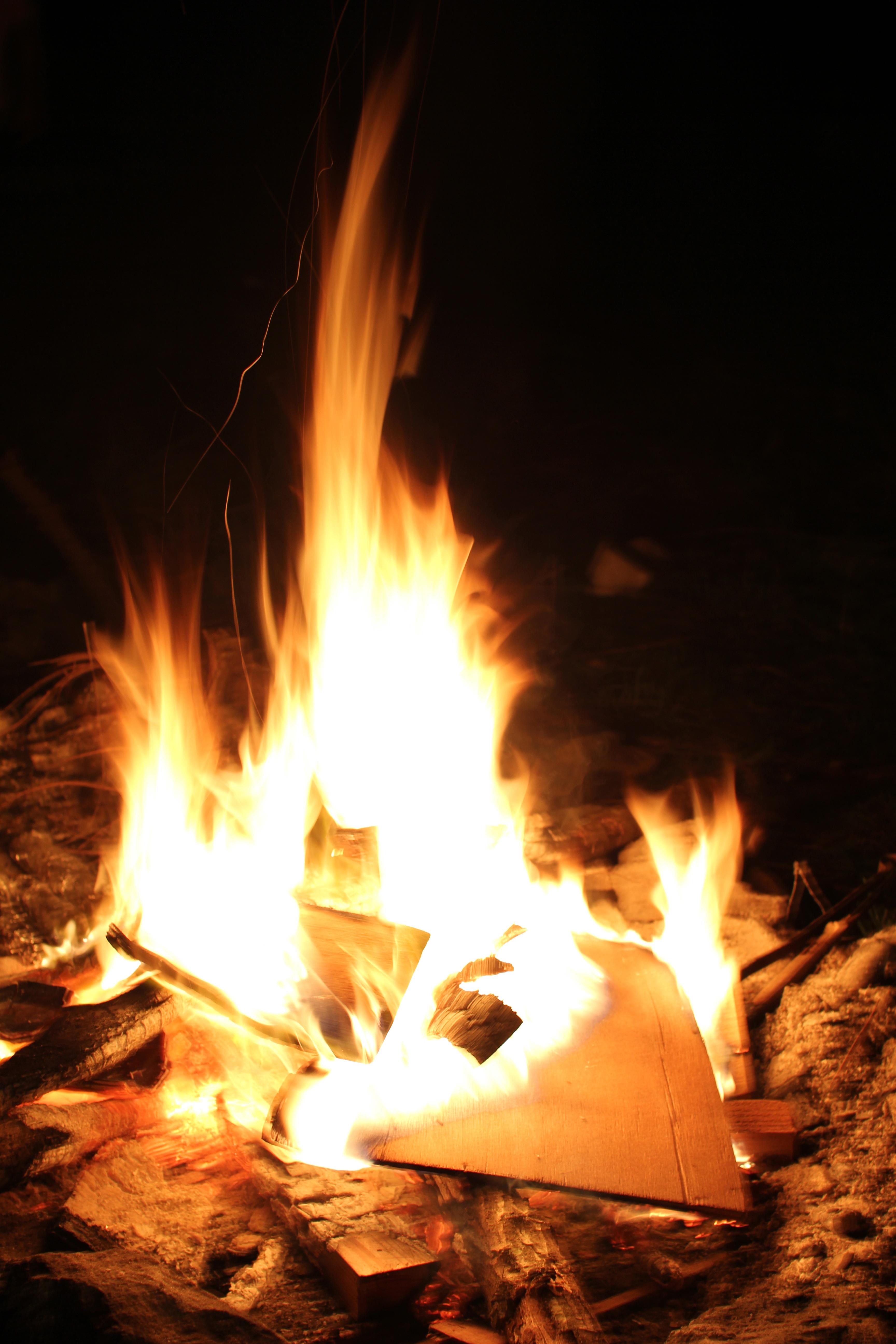 Fire, Dispose, Hot, Nature, Warm, HQ Photo