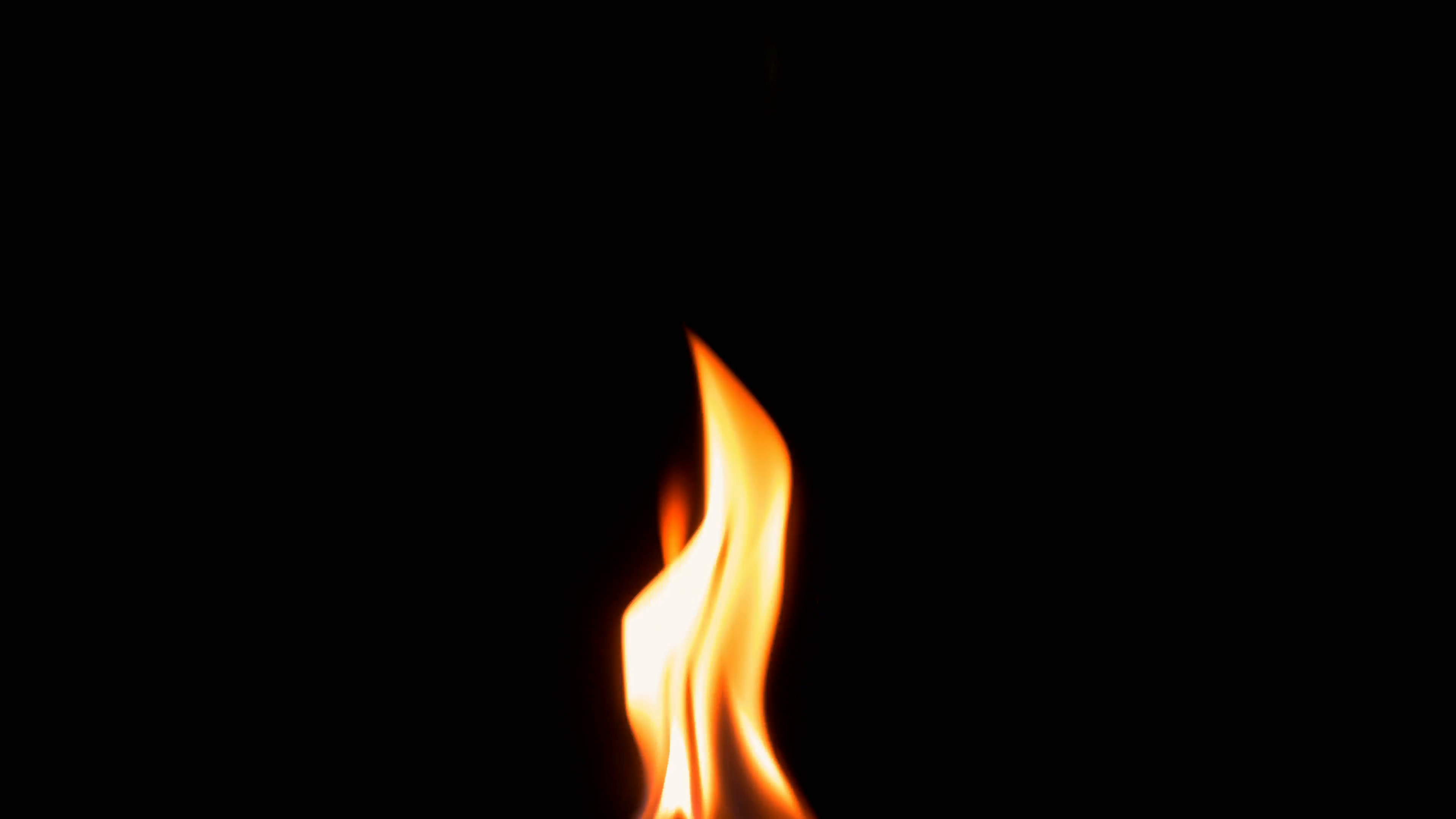 Natural burning fire flame on the black background. Red and yellow ...