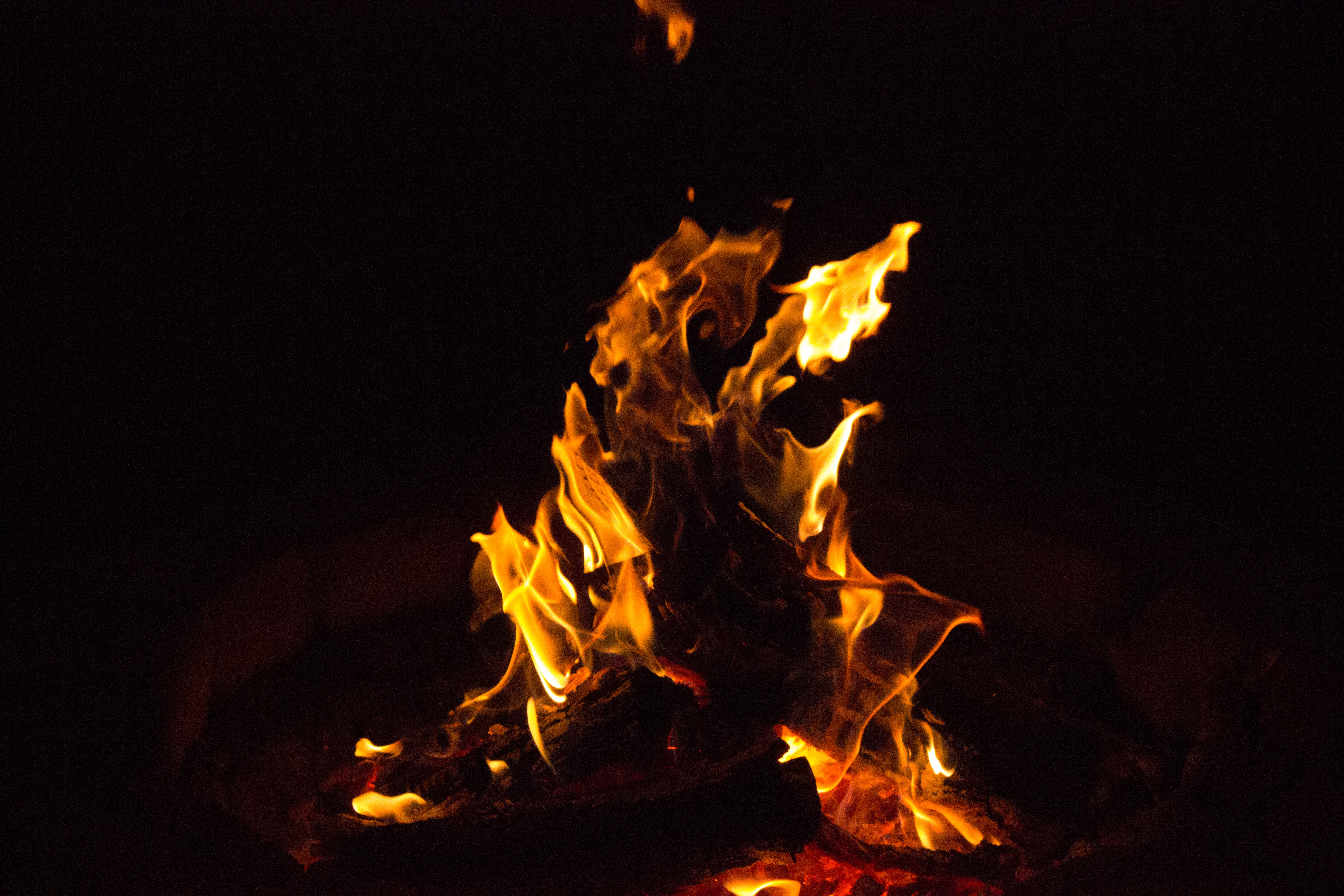 Free stock photo of camp fire, fire, flames
