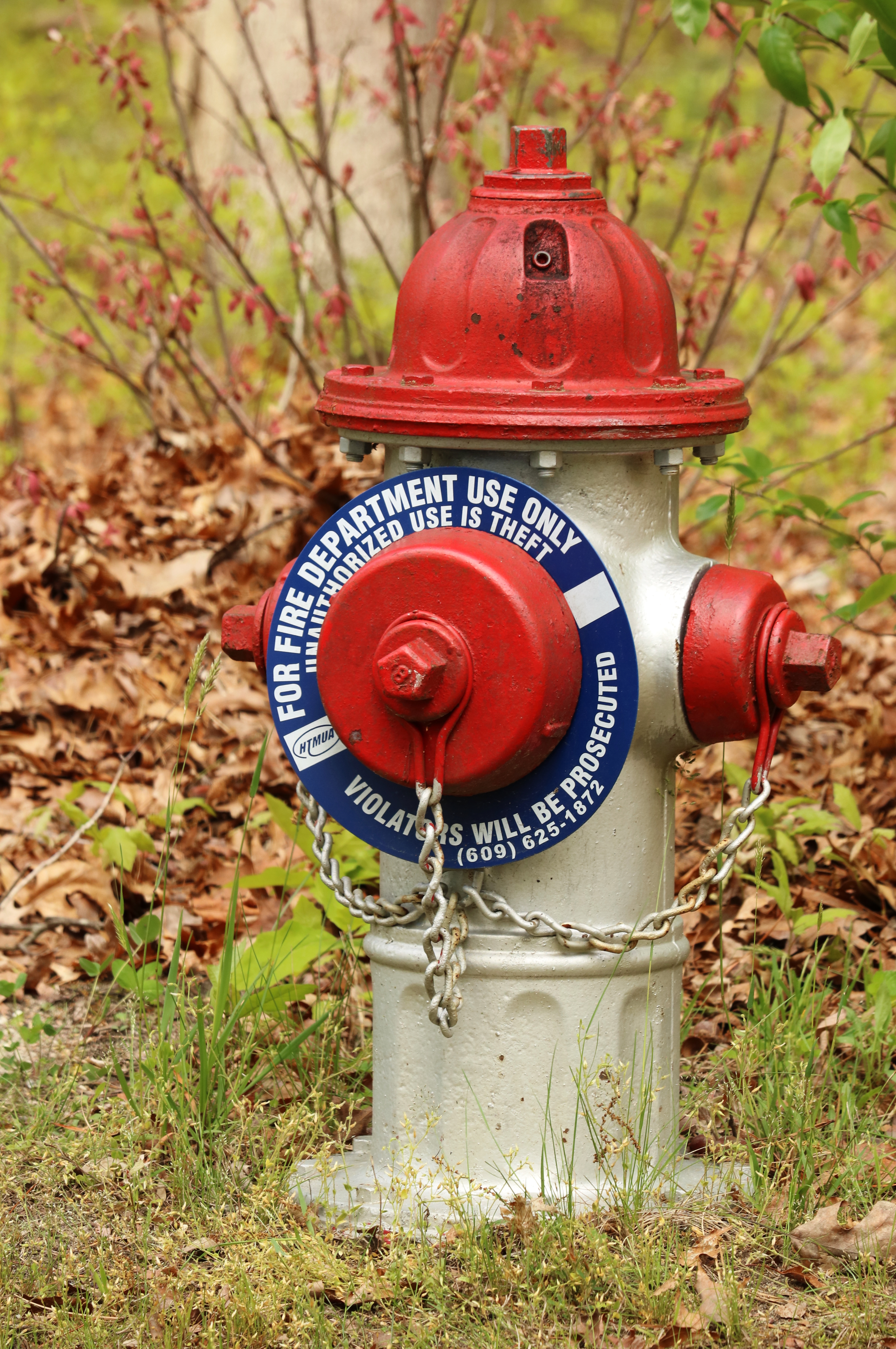 Fire hydrant photo