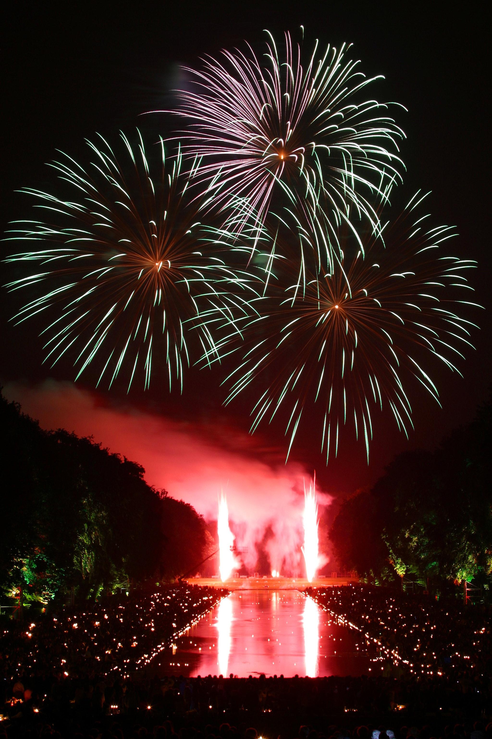 Fireworks Display, 2018, Fireworks, Trees, Sparks, HQ Photo