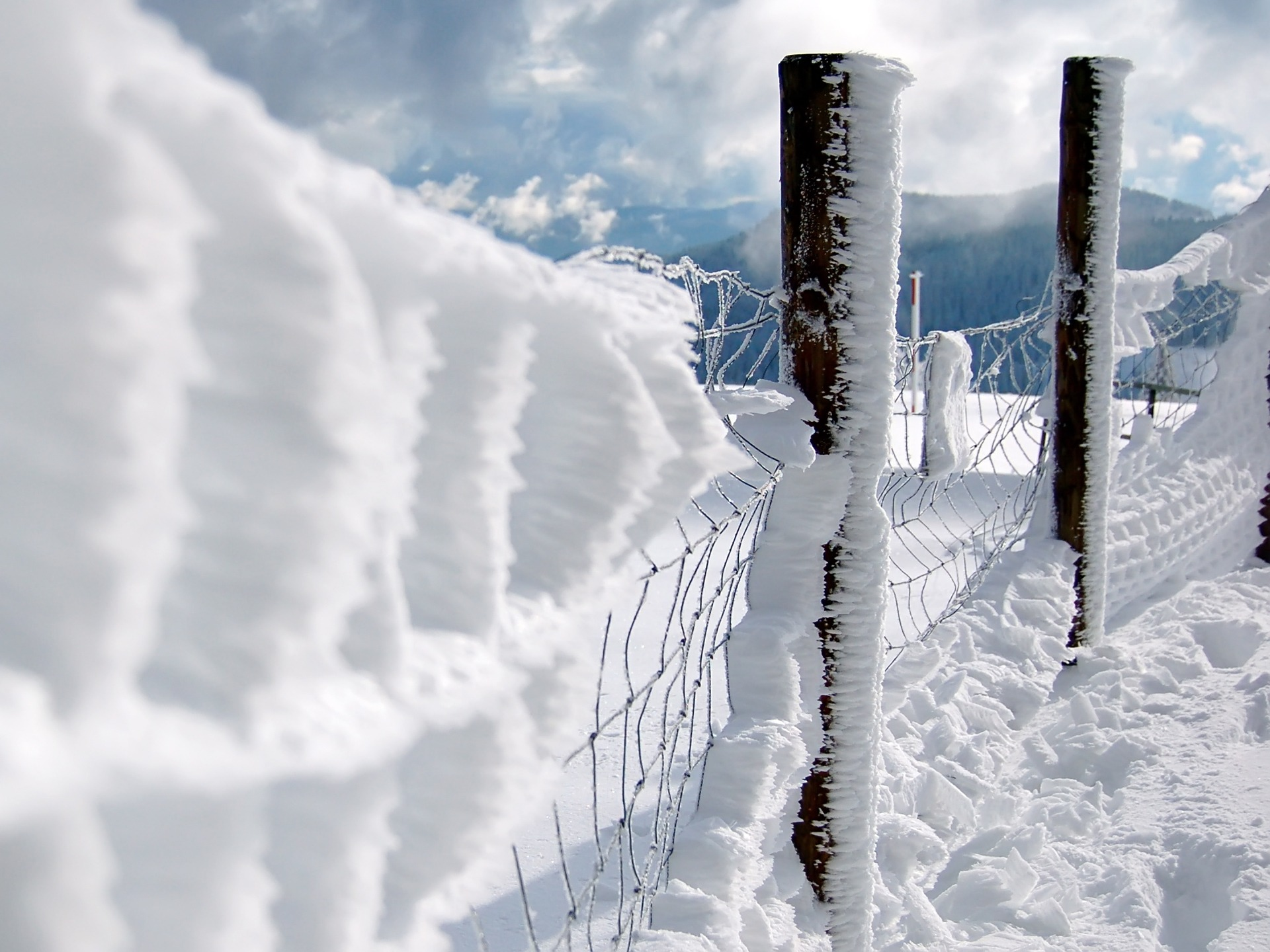 First Snow Wallpaper Winter Nature Wallpapers in jpg format for free ...