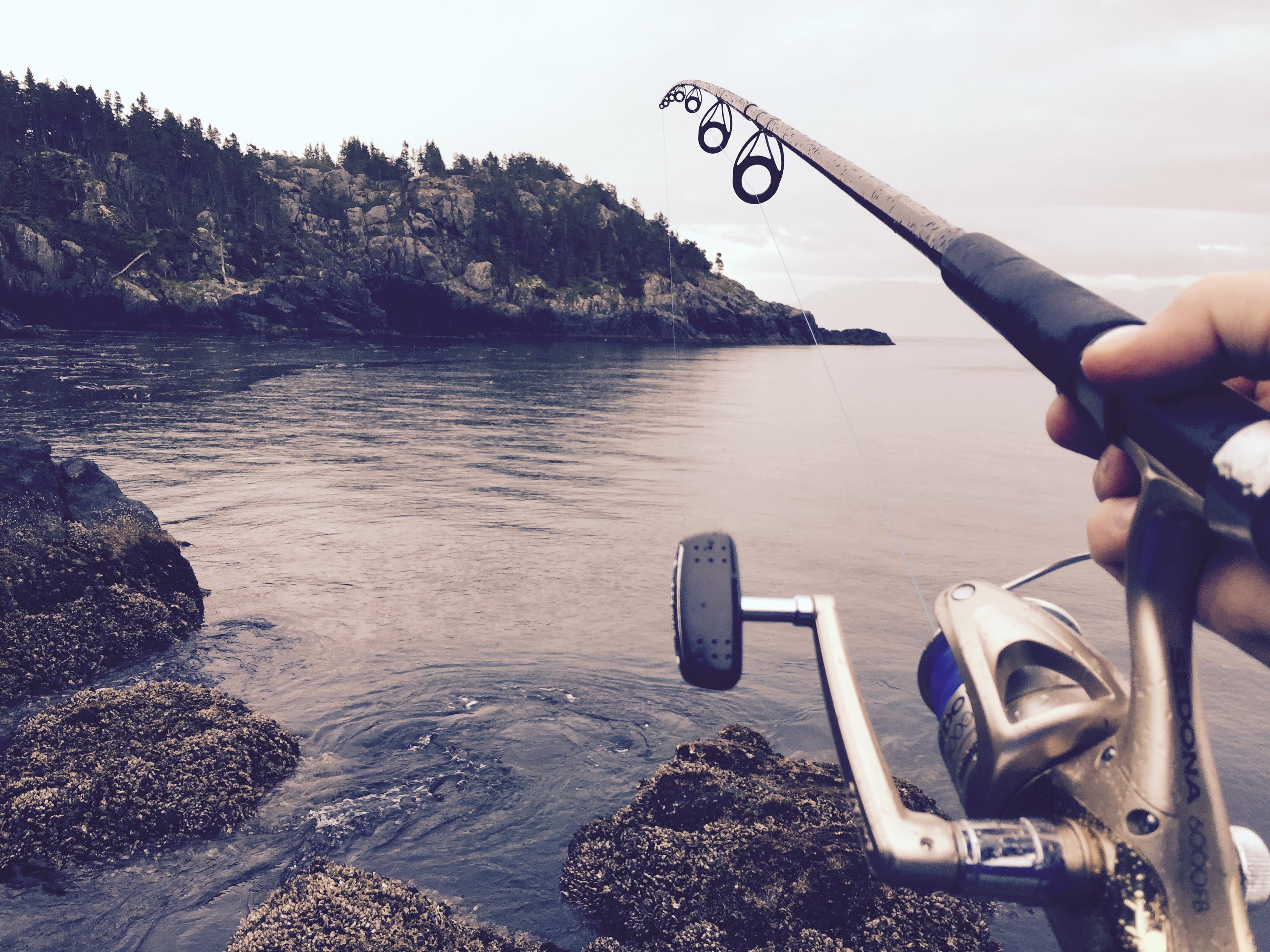 Free Photo Fishing Beach Fish Flow Free Download Jooinn