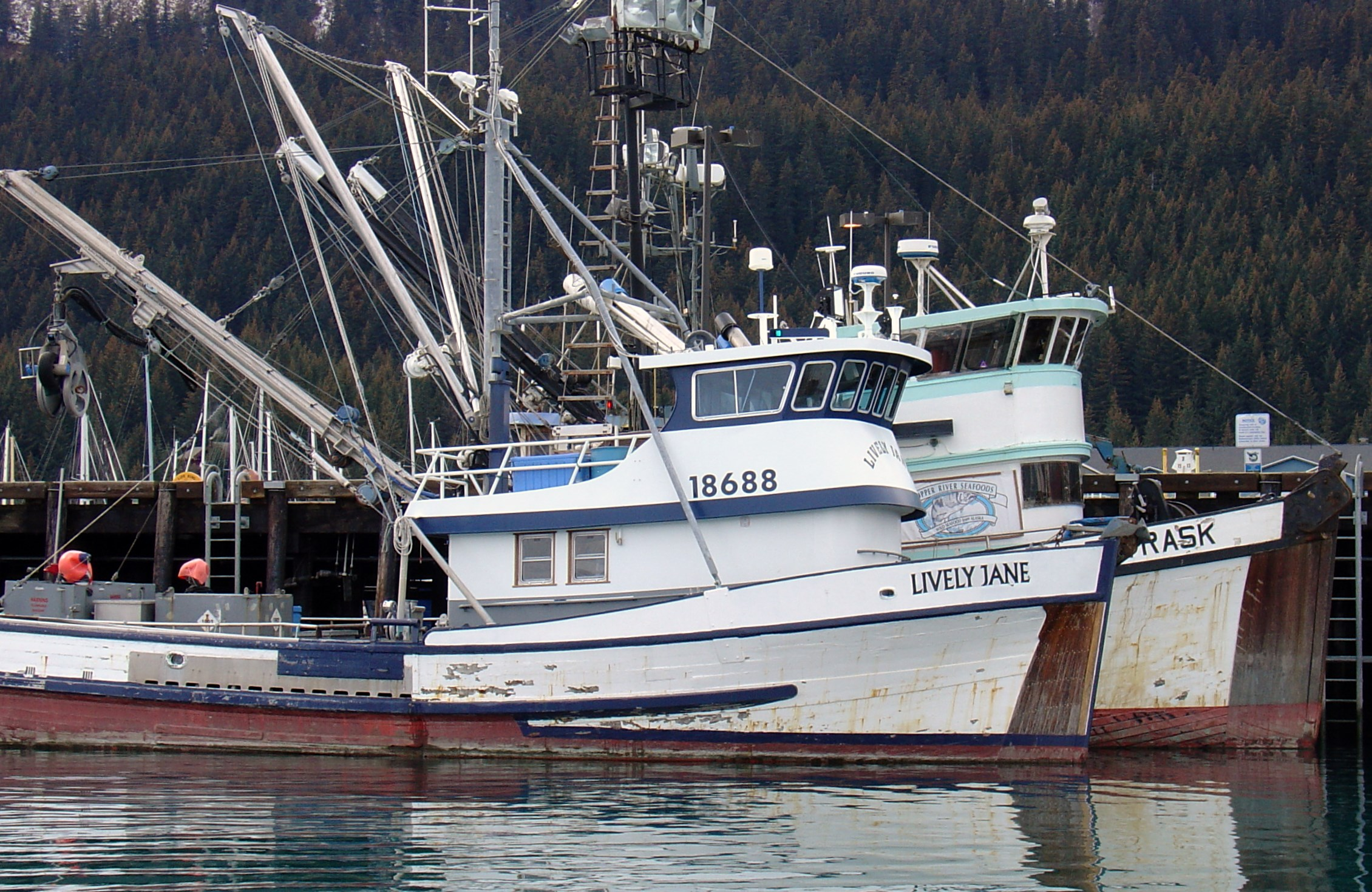 To Attract Fishing Boats, Start With Infrastructure Say Fishermen at ...