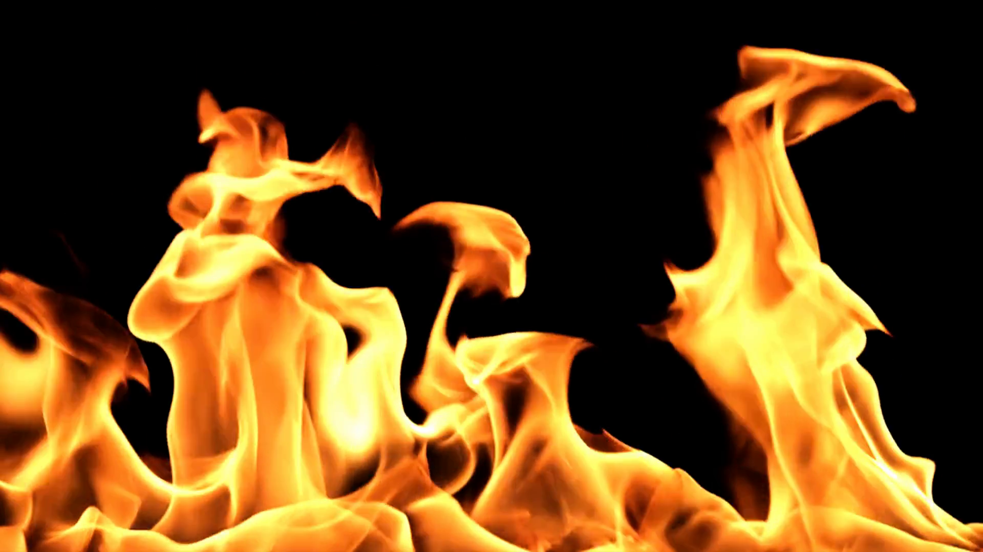 Flame burning of closeup on transparent background with alpha ...