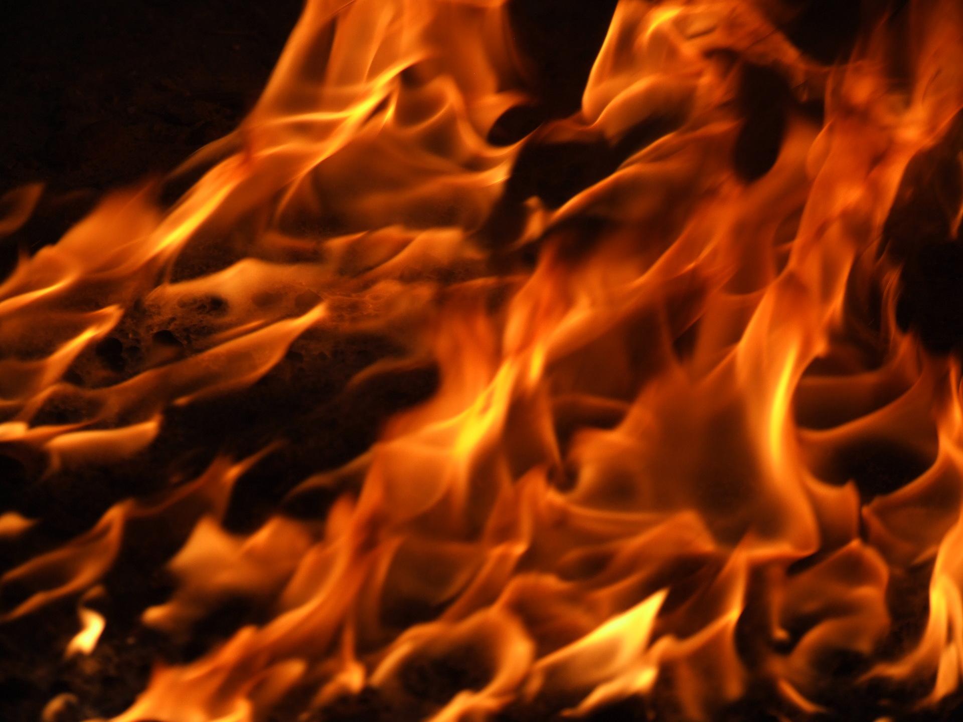 The Flame — Alpha Lambda Delta