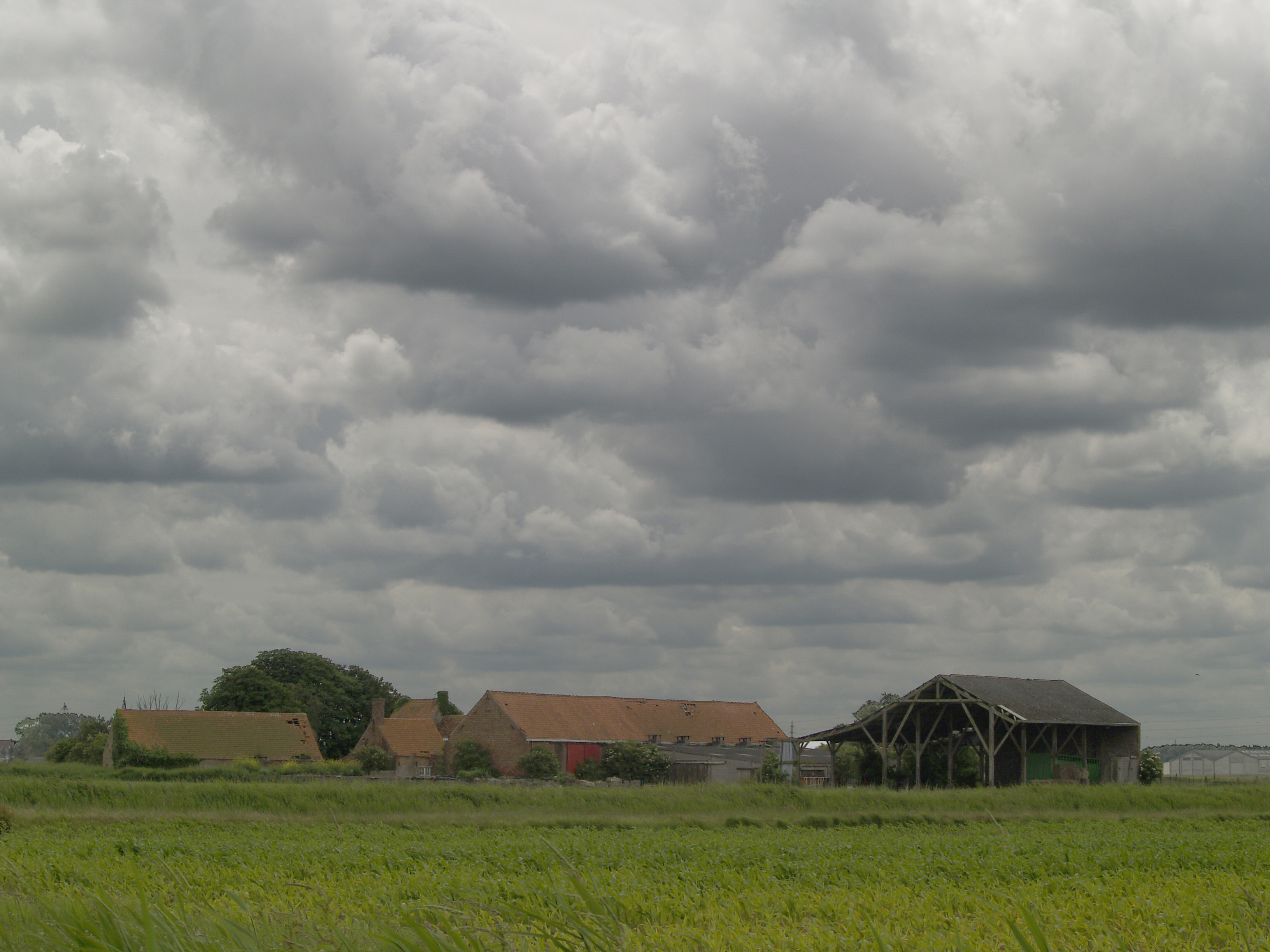 Flemish farm photo