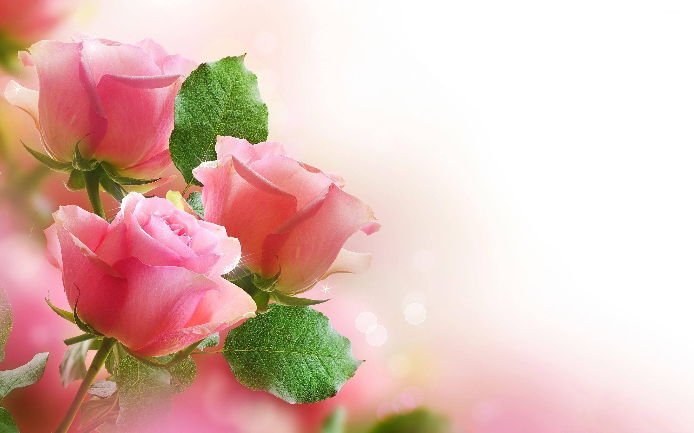 Flower – free download