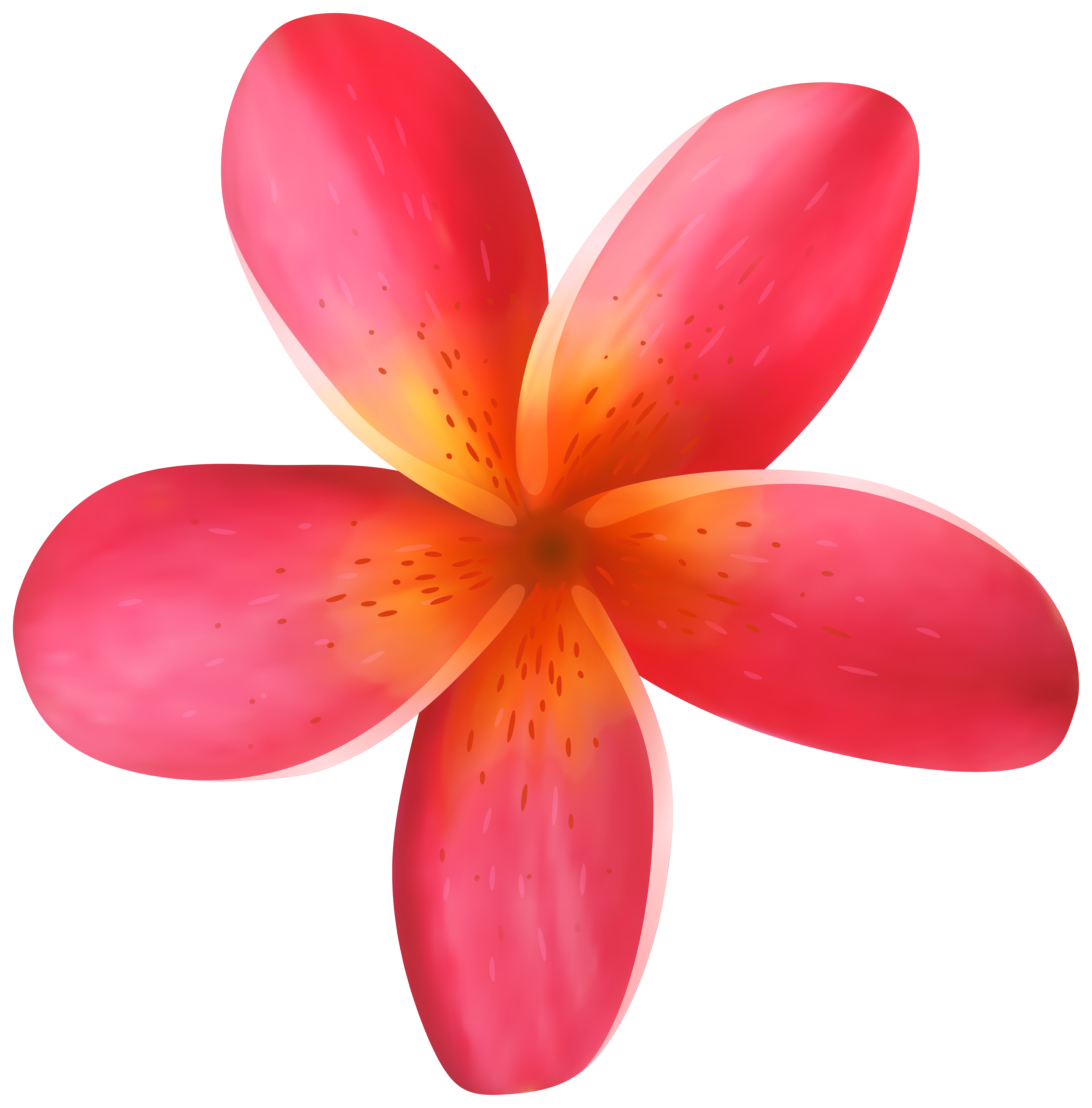 Tropical Flower PNG Clip Art Image | Gallery Yopriceville - High ...