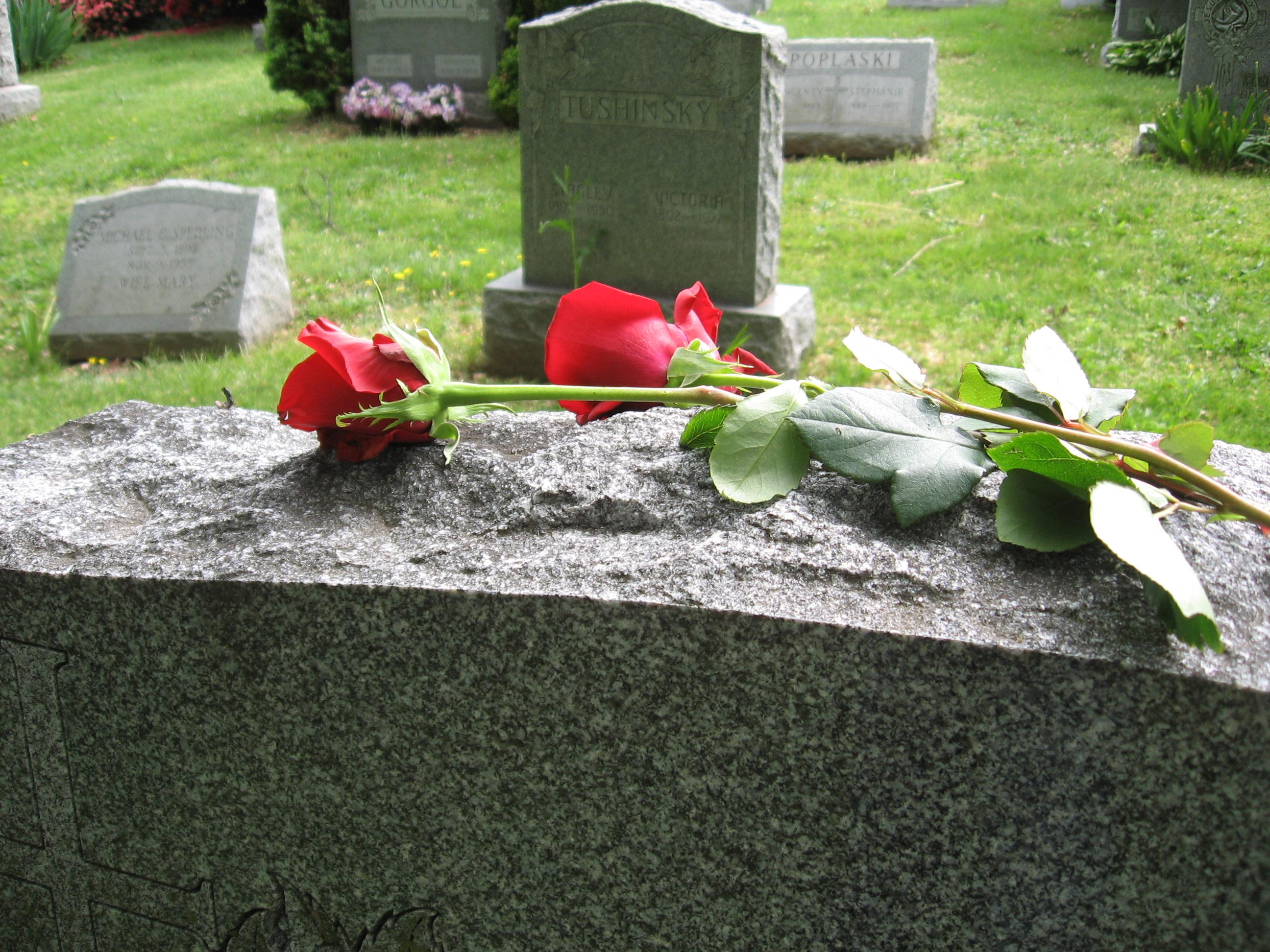 Grave Flower 2 by ChelseaChaos on DeviantArt