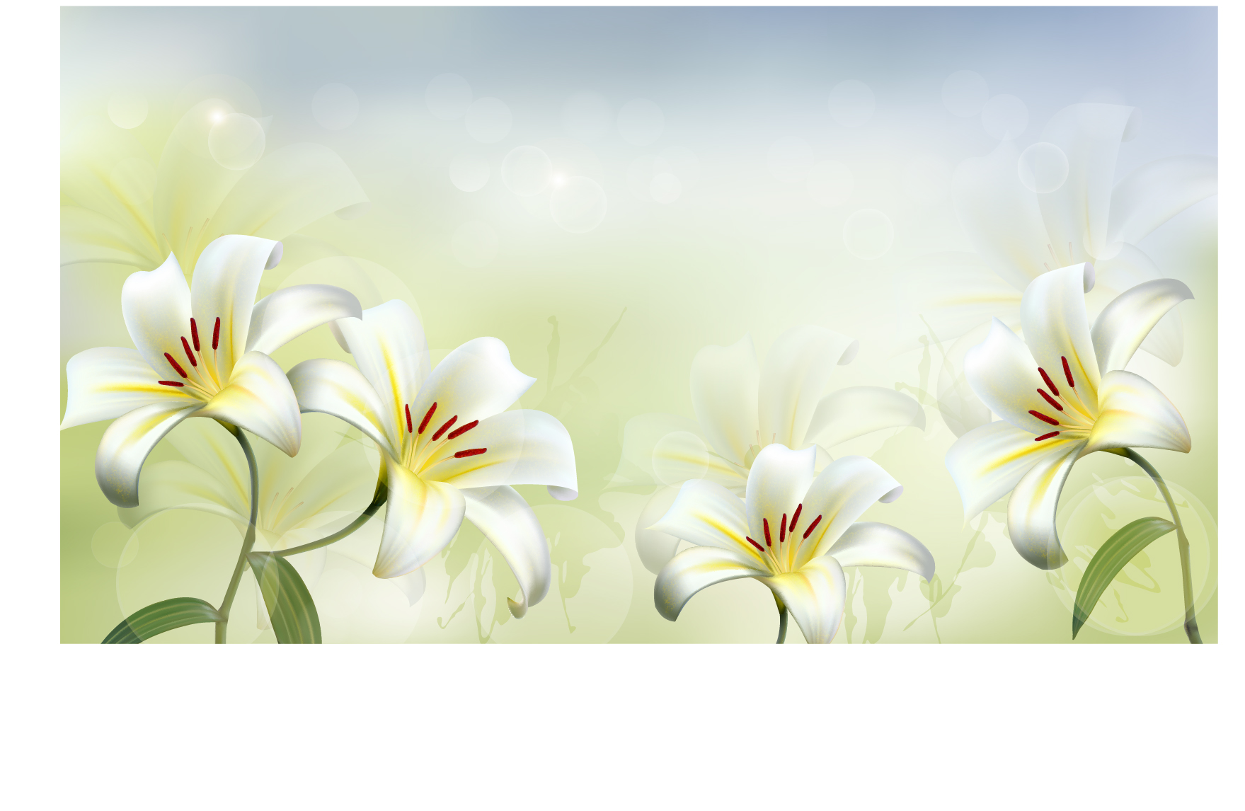 Free Photo Flower Background Outdoor Petal Pretty Free