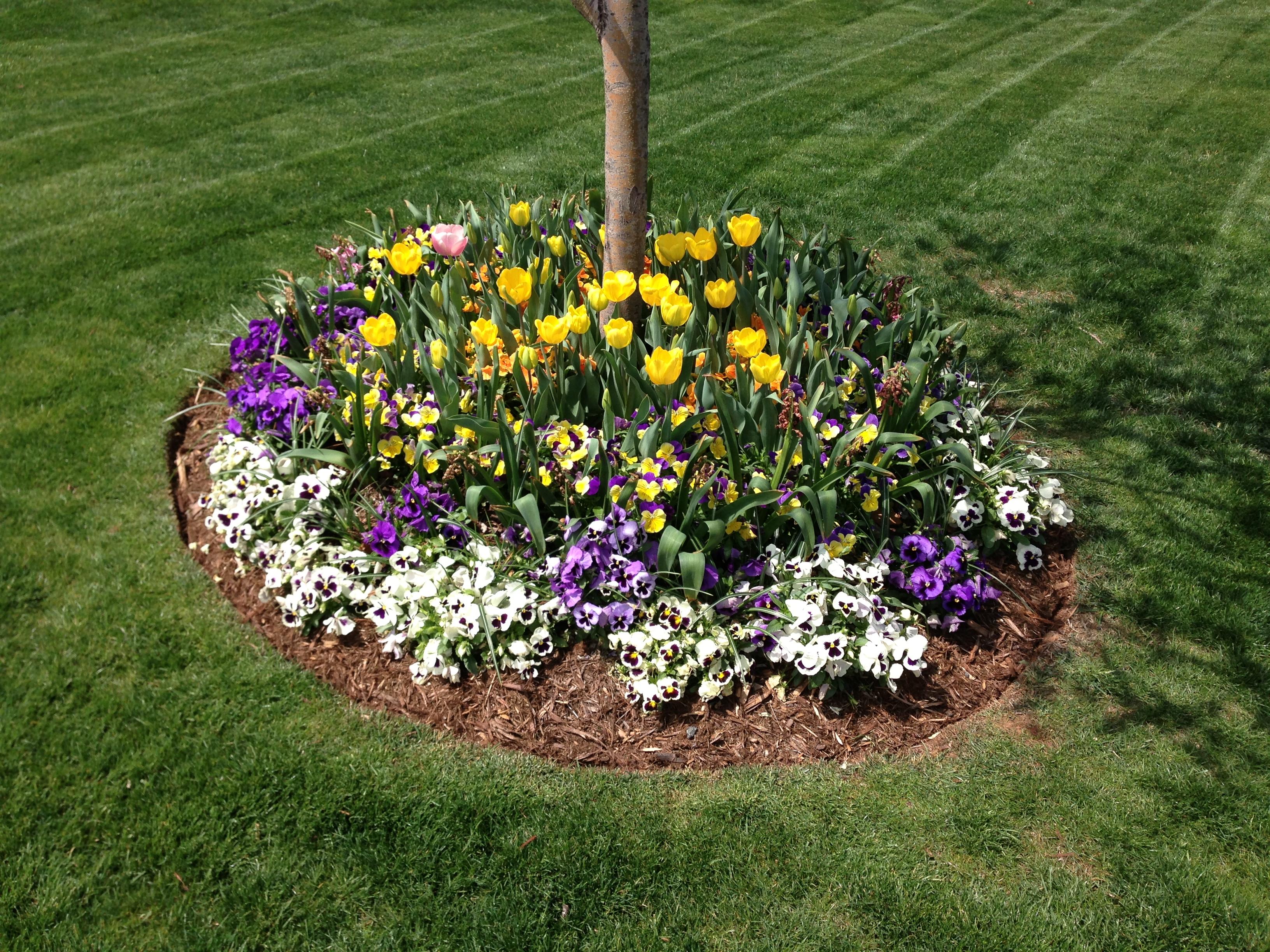 Flower Beds - Seasonal Installation and Maintenance - TurfWorks ...