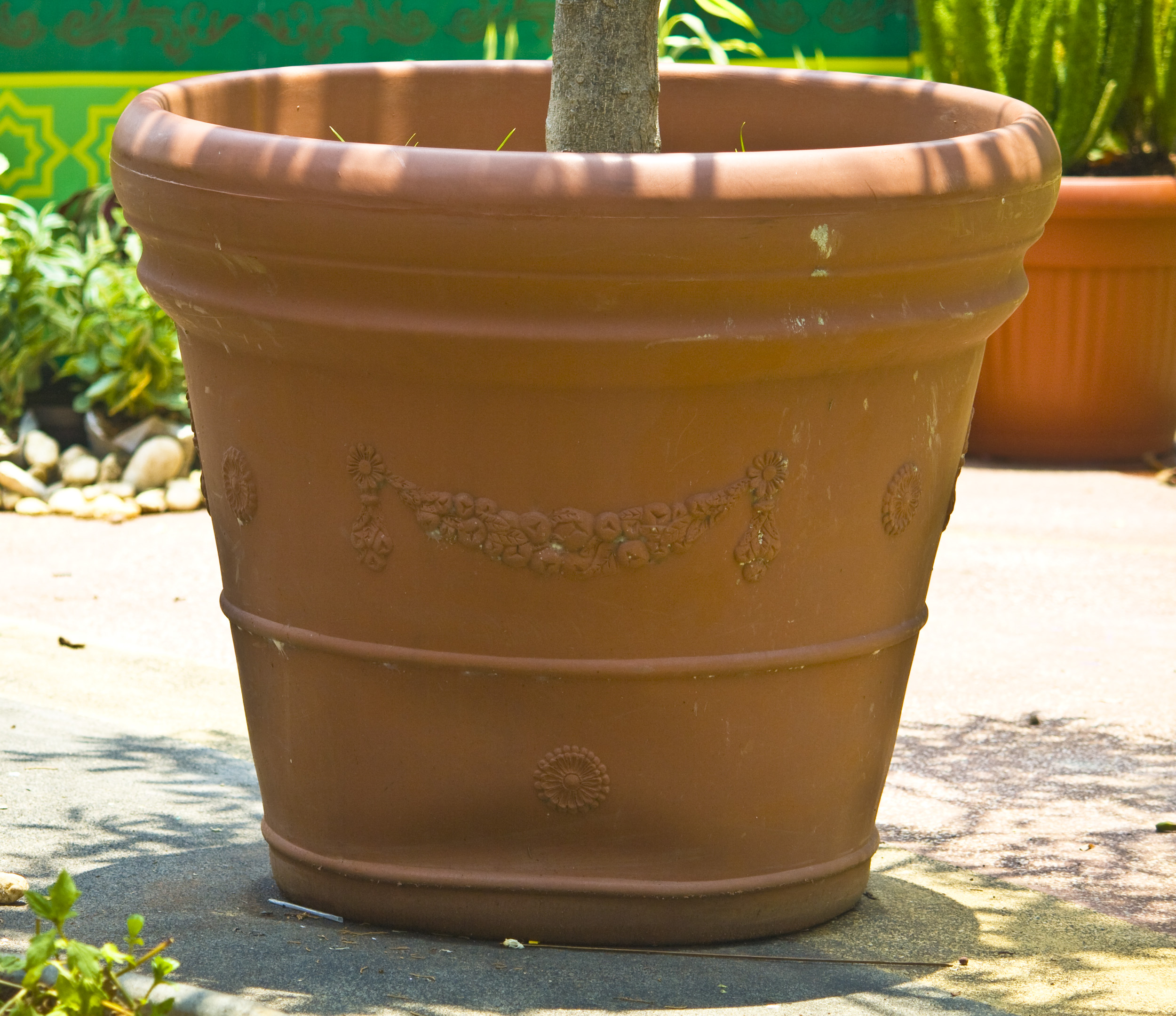 Flower pot photo