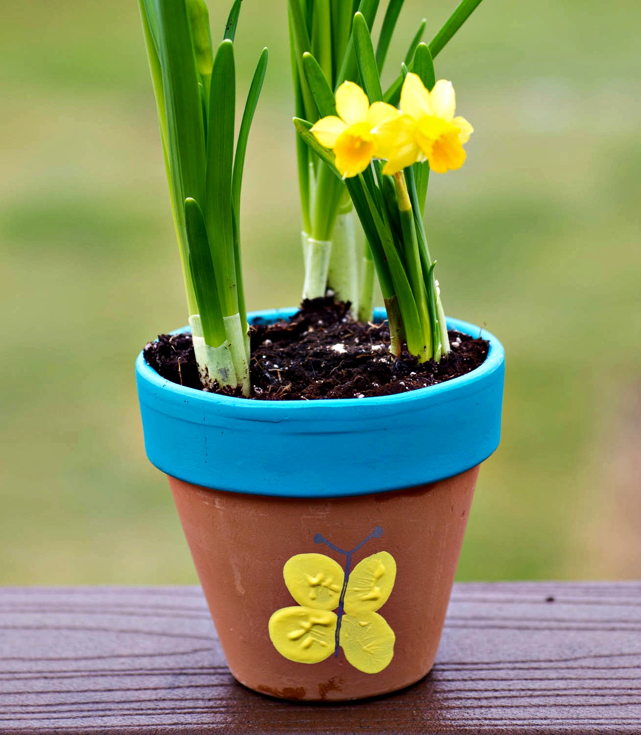 Thumbprint Flower Pot- Upstate Ramblings
