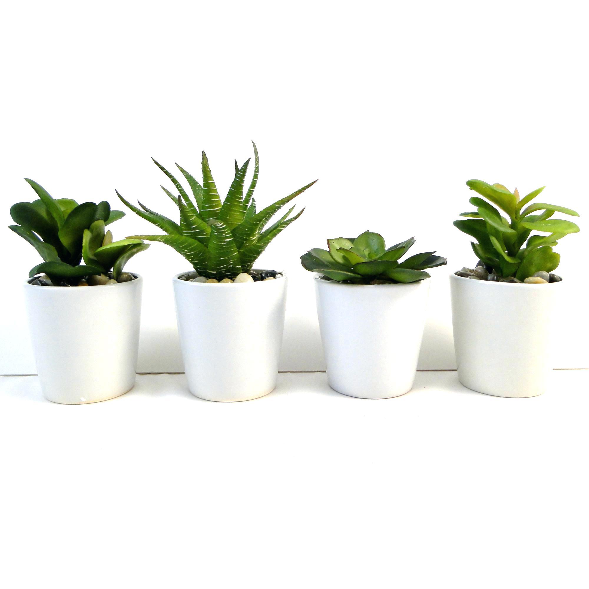 white flower pot – ChainCuttersUnion