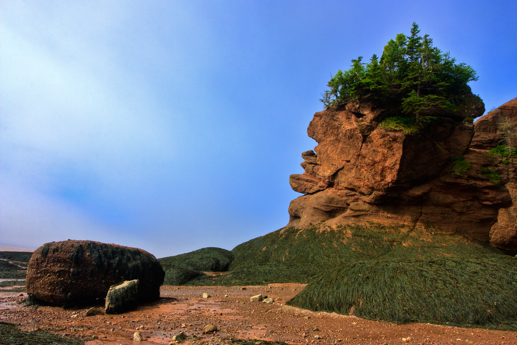 Flowerpot Rocks - HDR, Scene, New, Of, Photo, HQ Photo