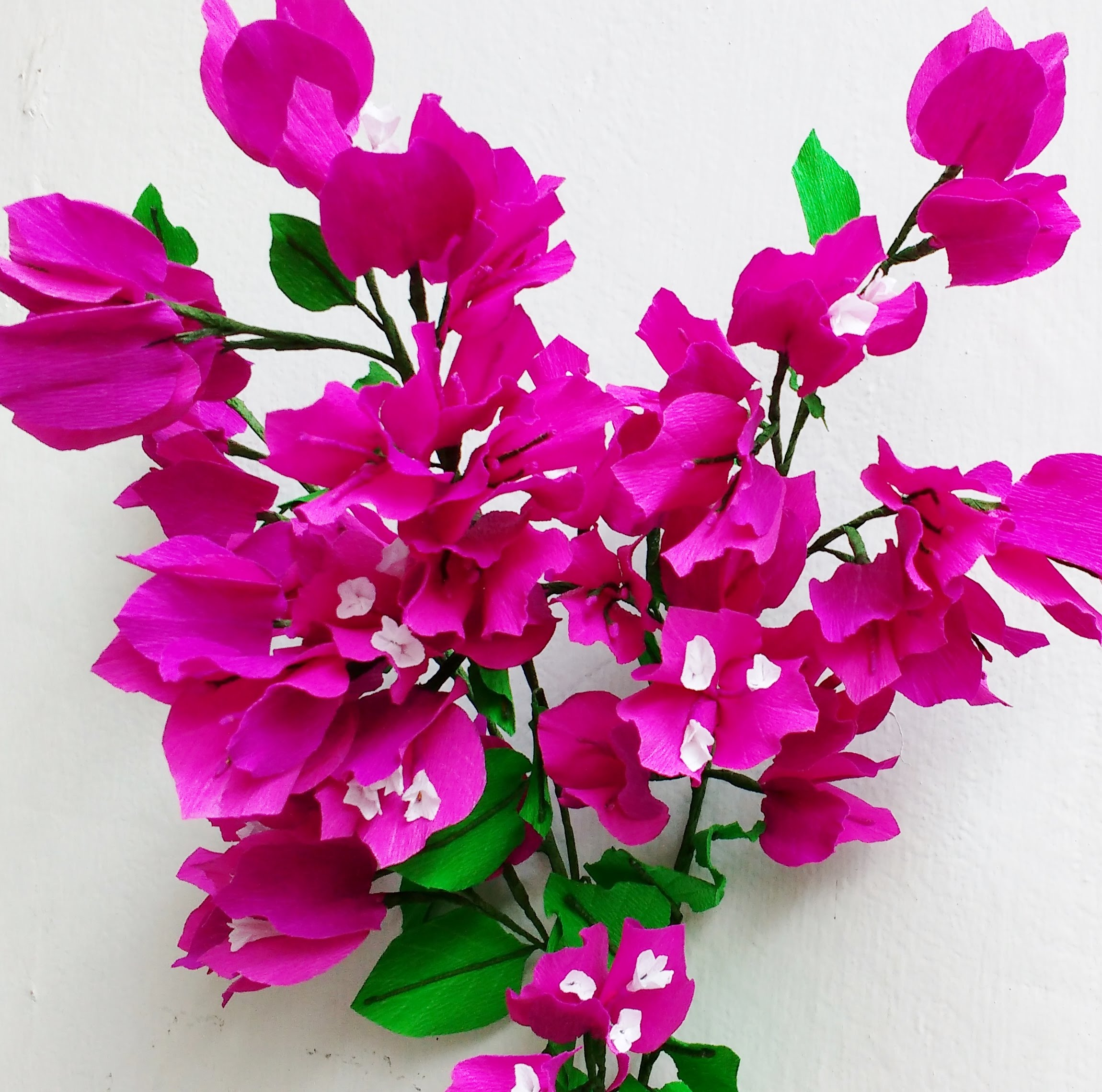 Free Photo Flowers Bugambilia Plants Trees Pink Free Download