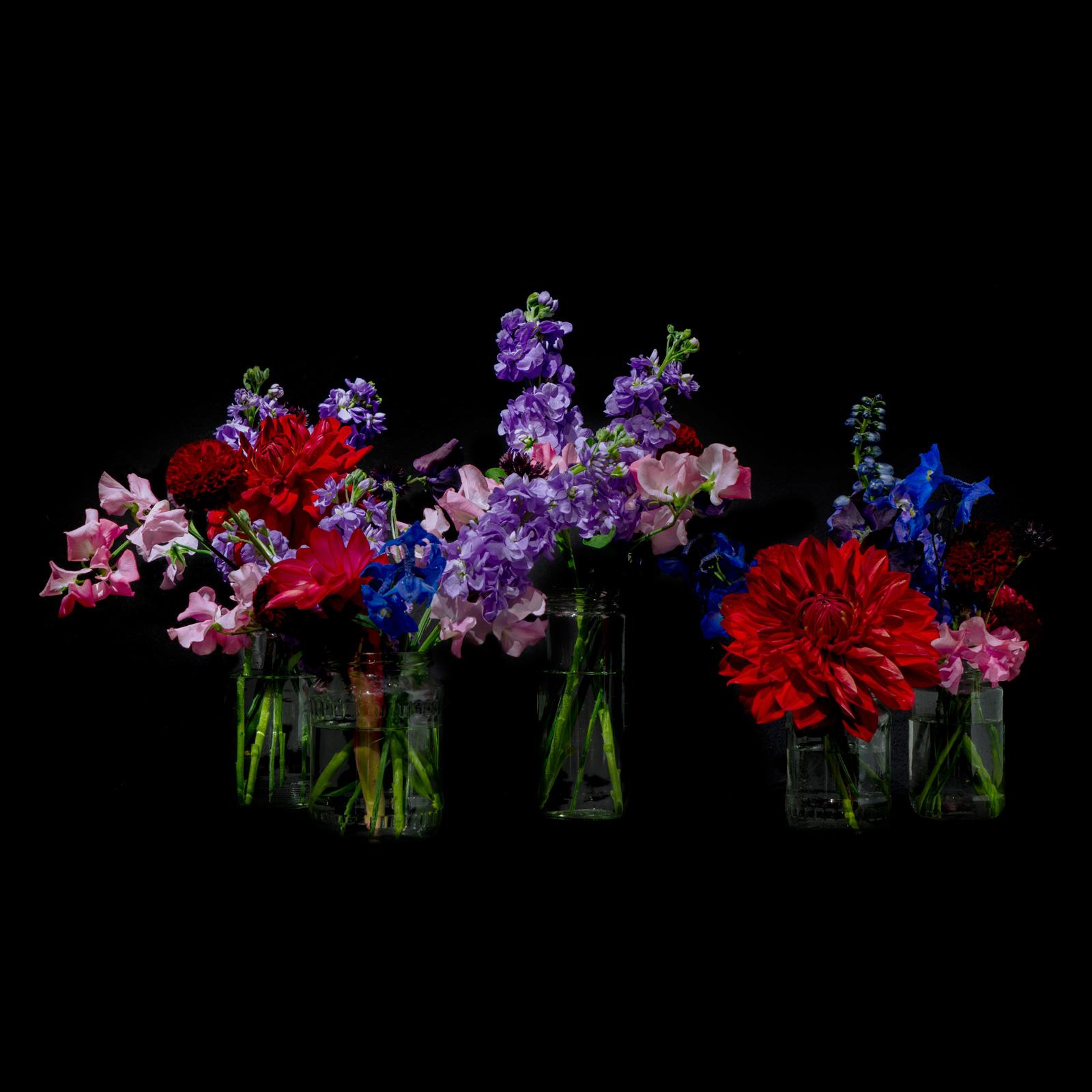 Pandora's Box Colourful – MARSANO