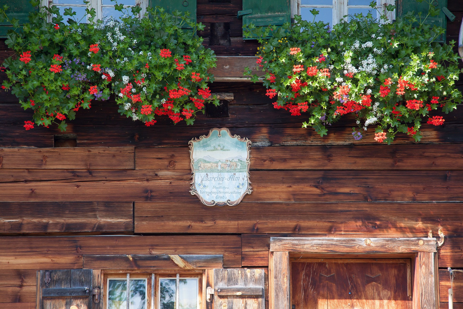 Flowers in the Window, Architecture, Blooming, Construction, Flower, HQ Photo
