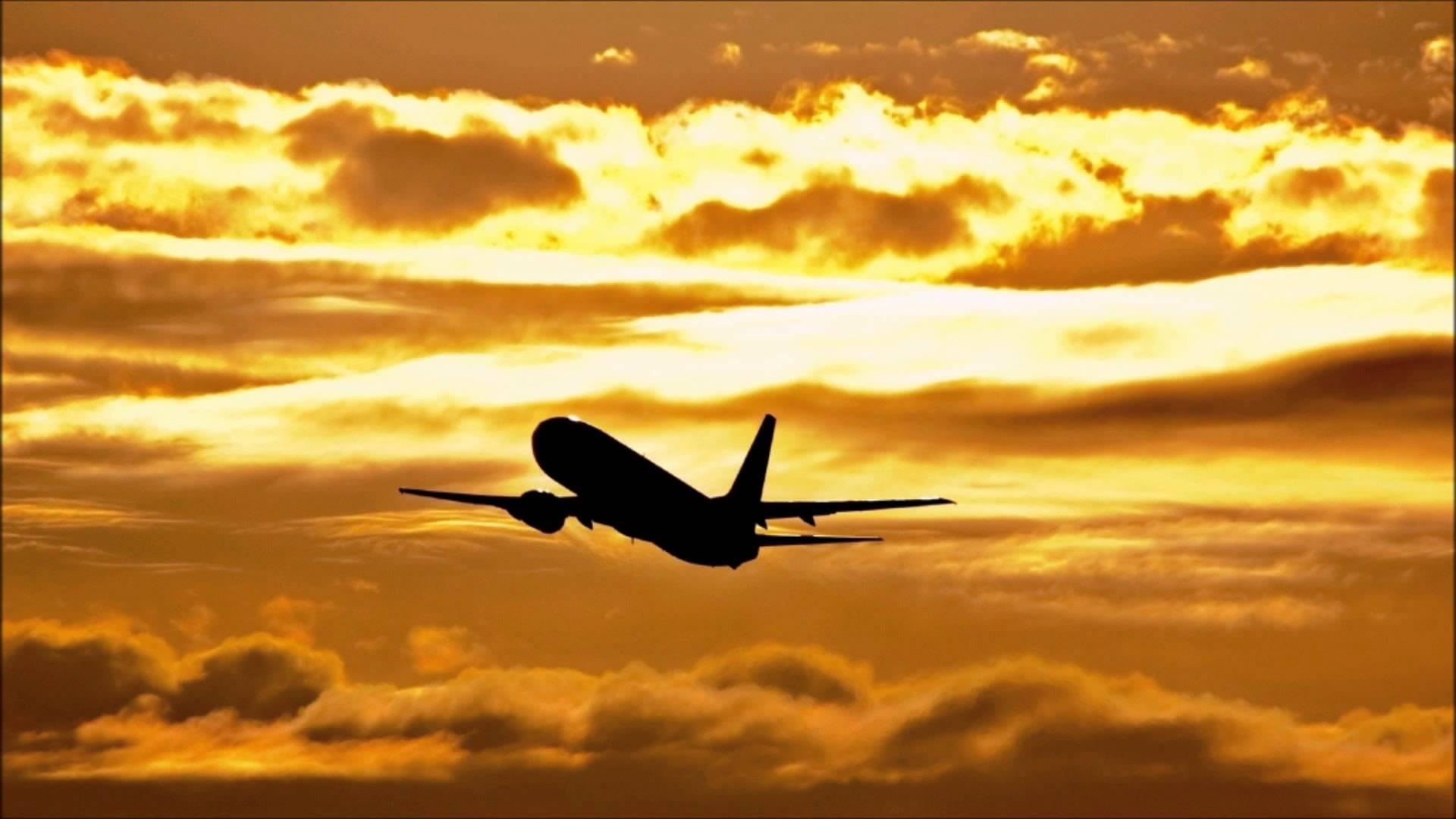 Flying away photo