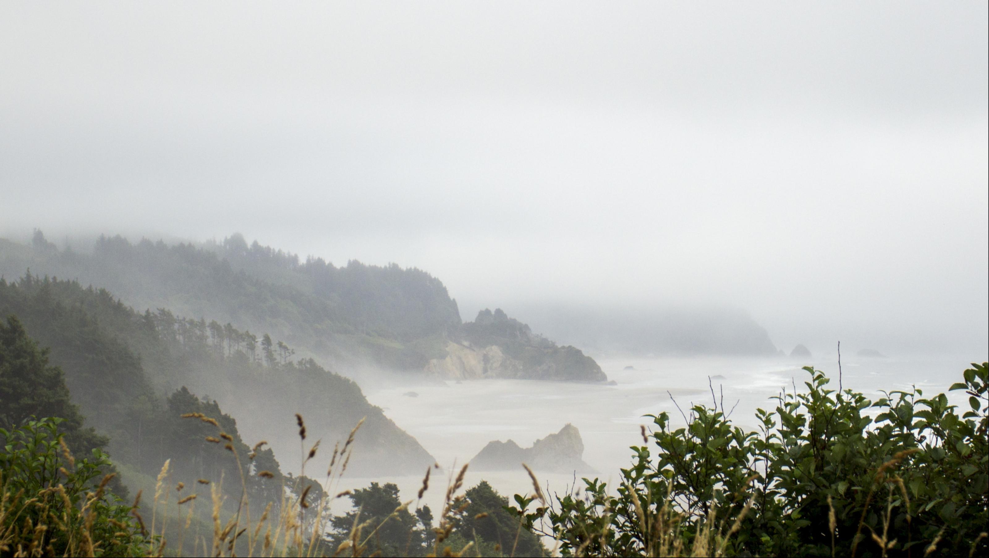 Fog along Silver Point, Oregon, Bay, Ocean, Tree, Sky, HQ Photo