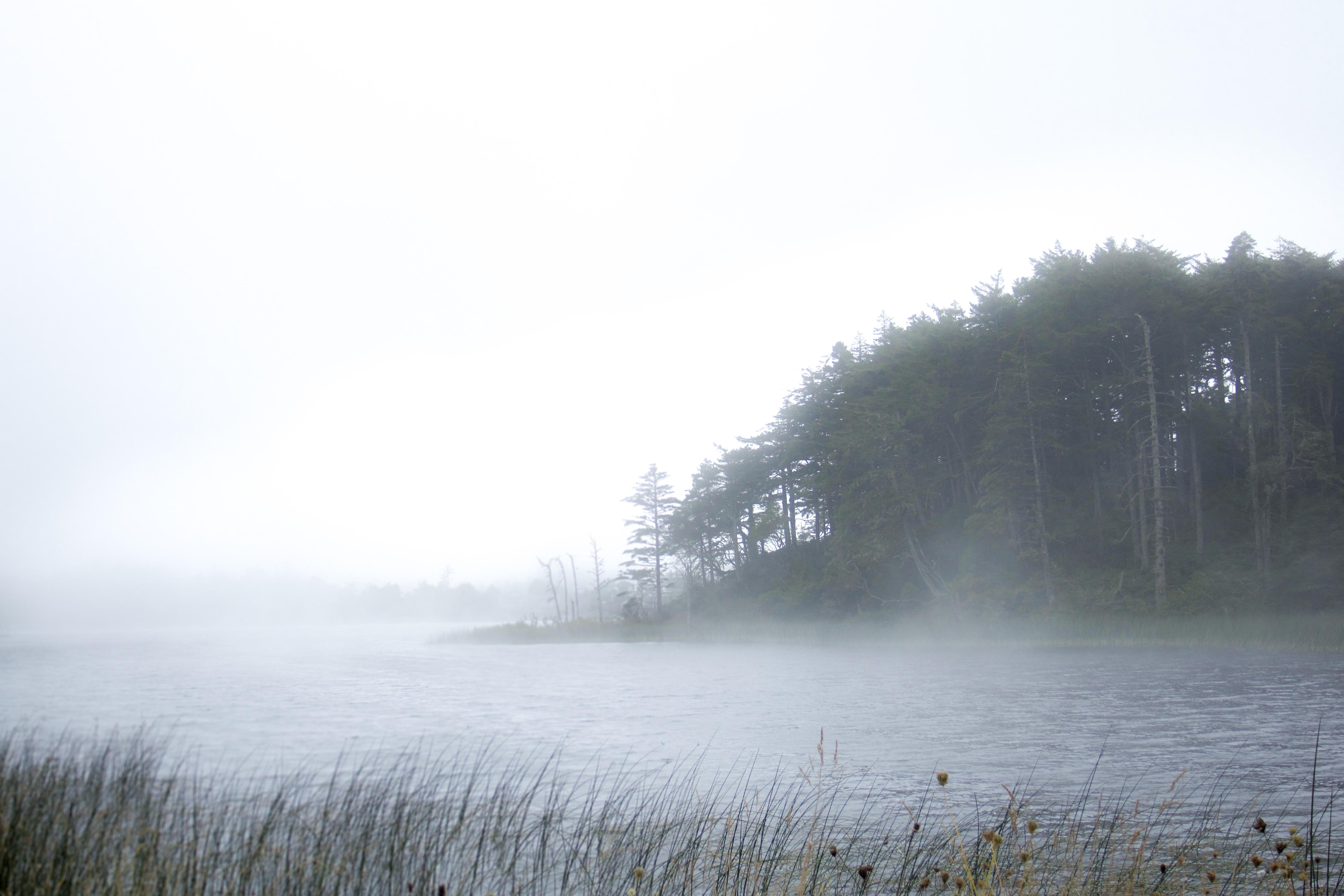 Fog on lake, oregon photo