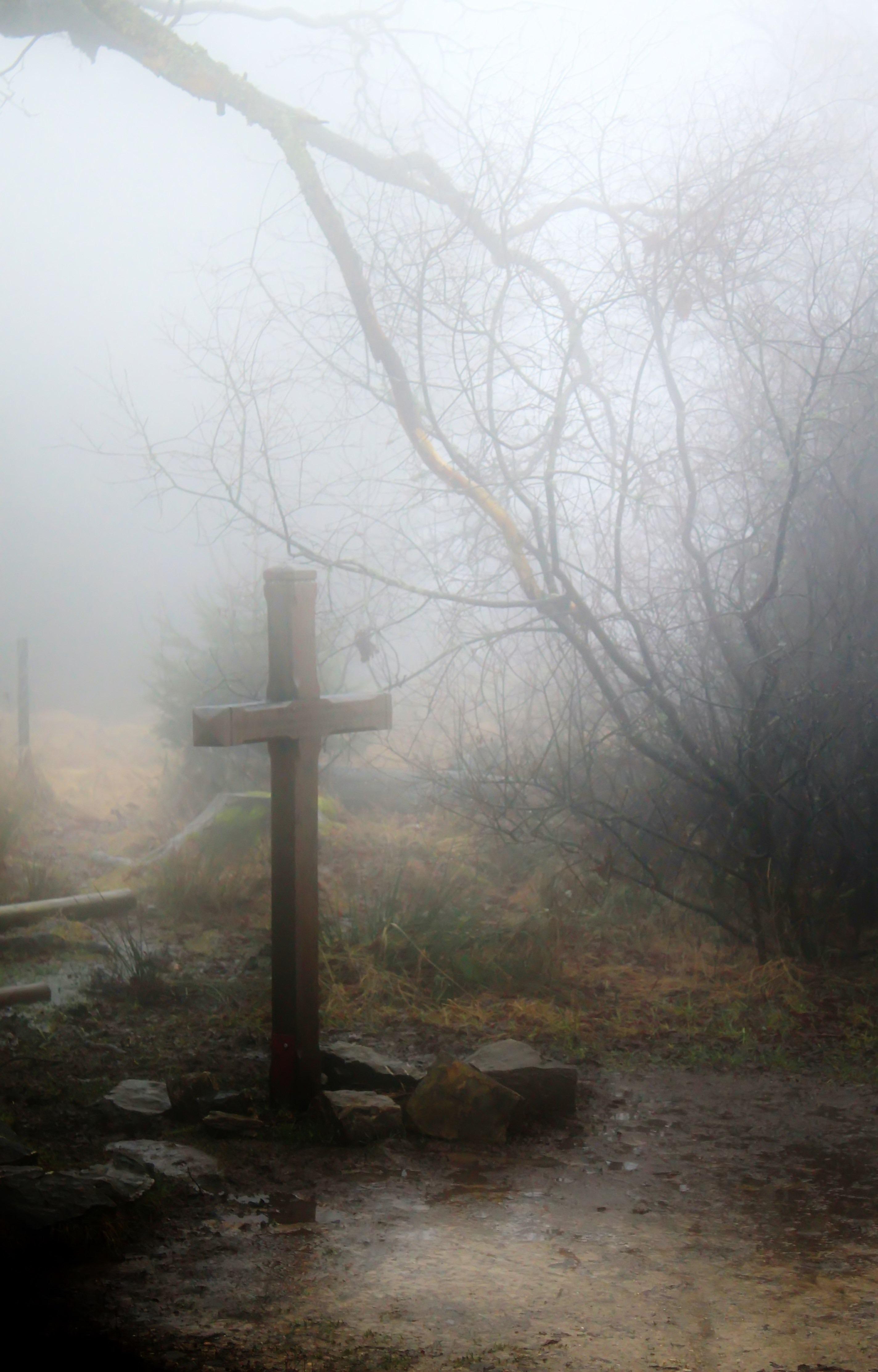Foggy photo
