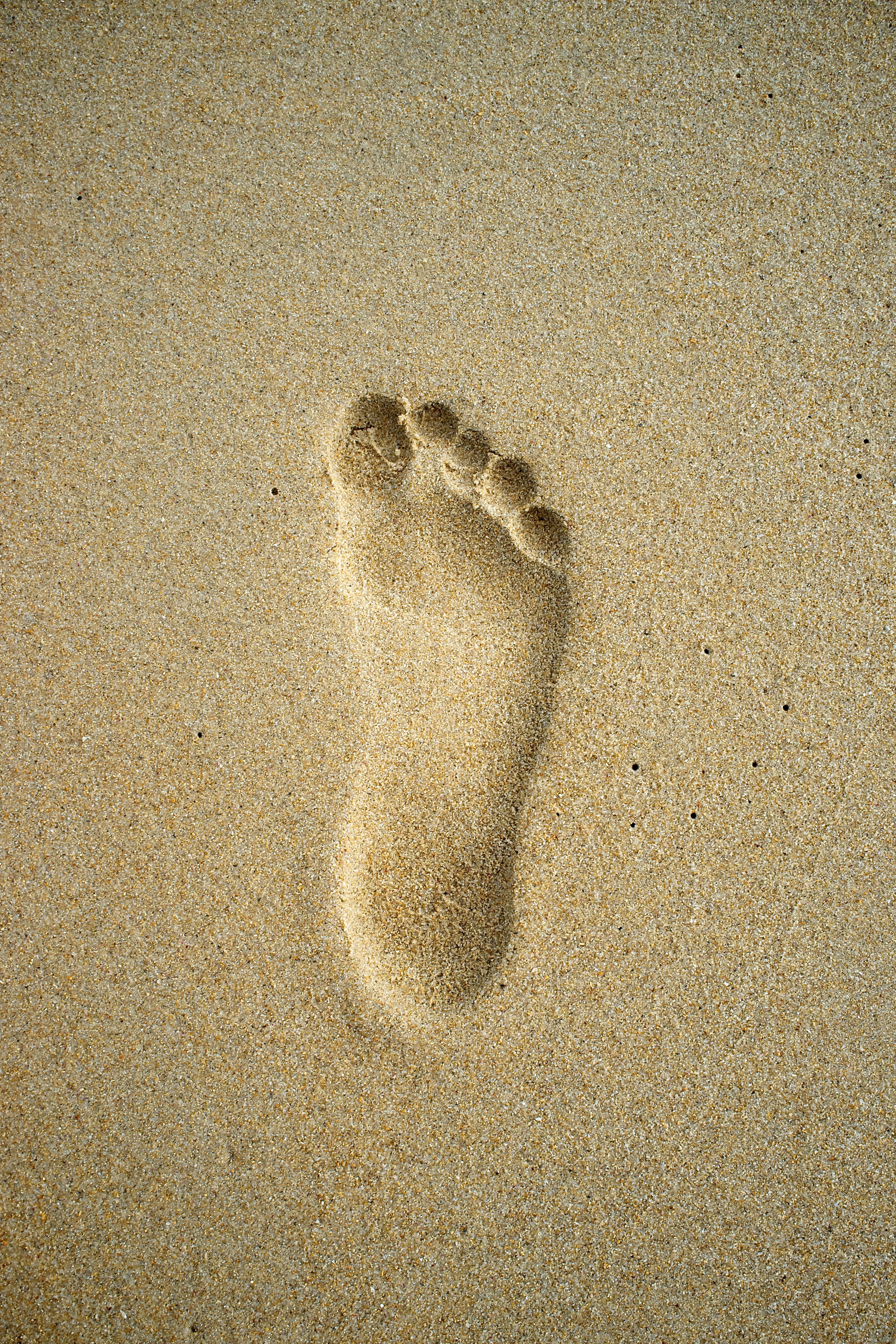 free photo  footprints in sand