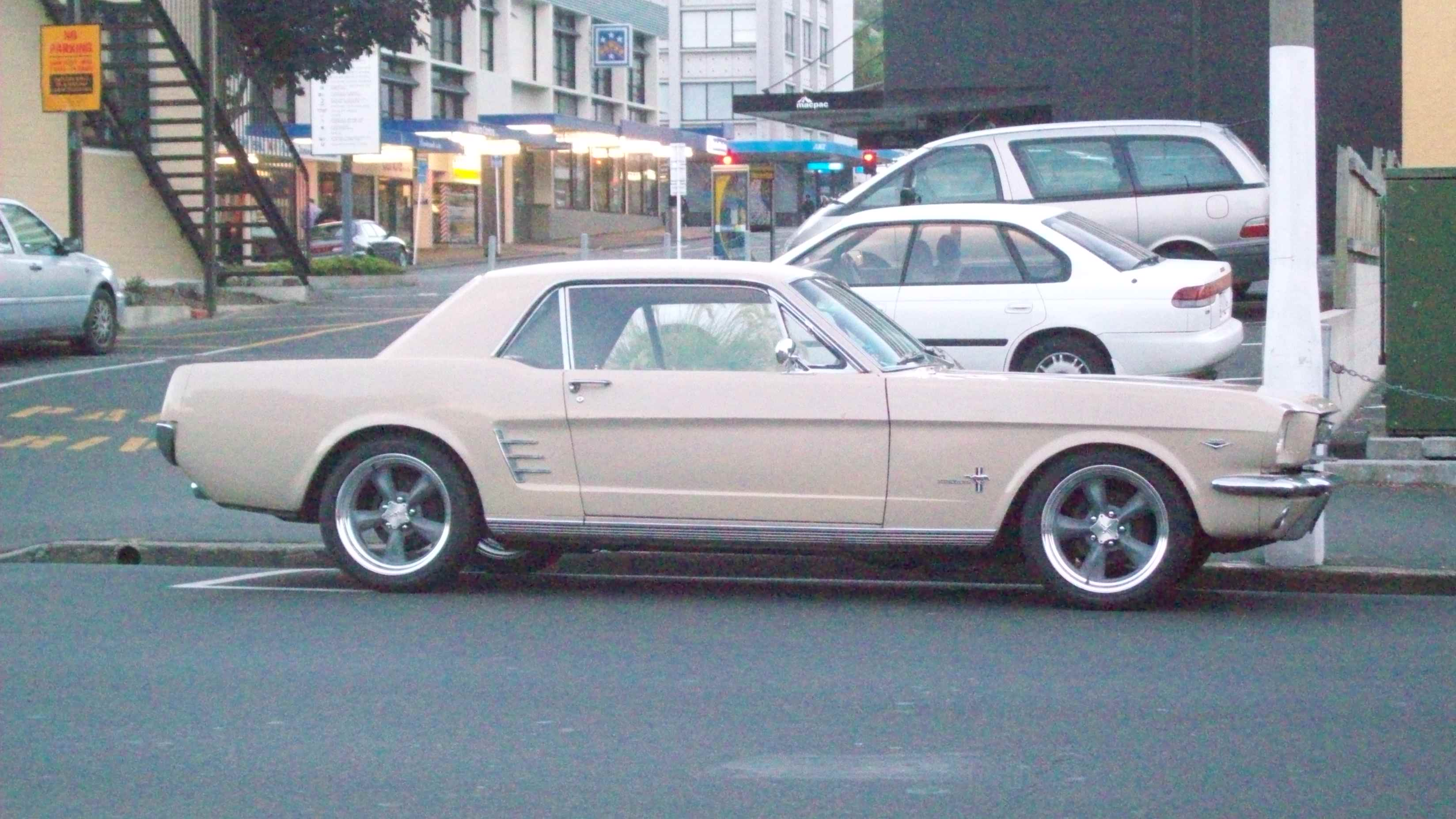 Ford mustang photo