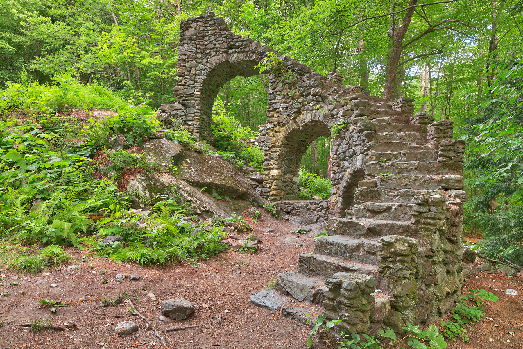 Forest castle ruins - hdr photo