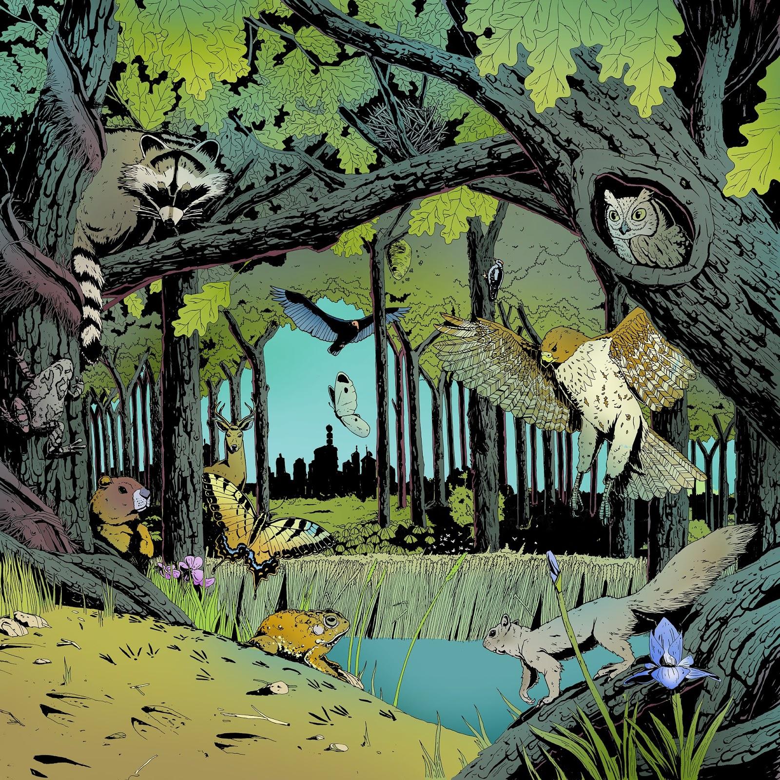Forest Illustration – Mended Arrow
