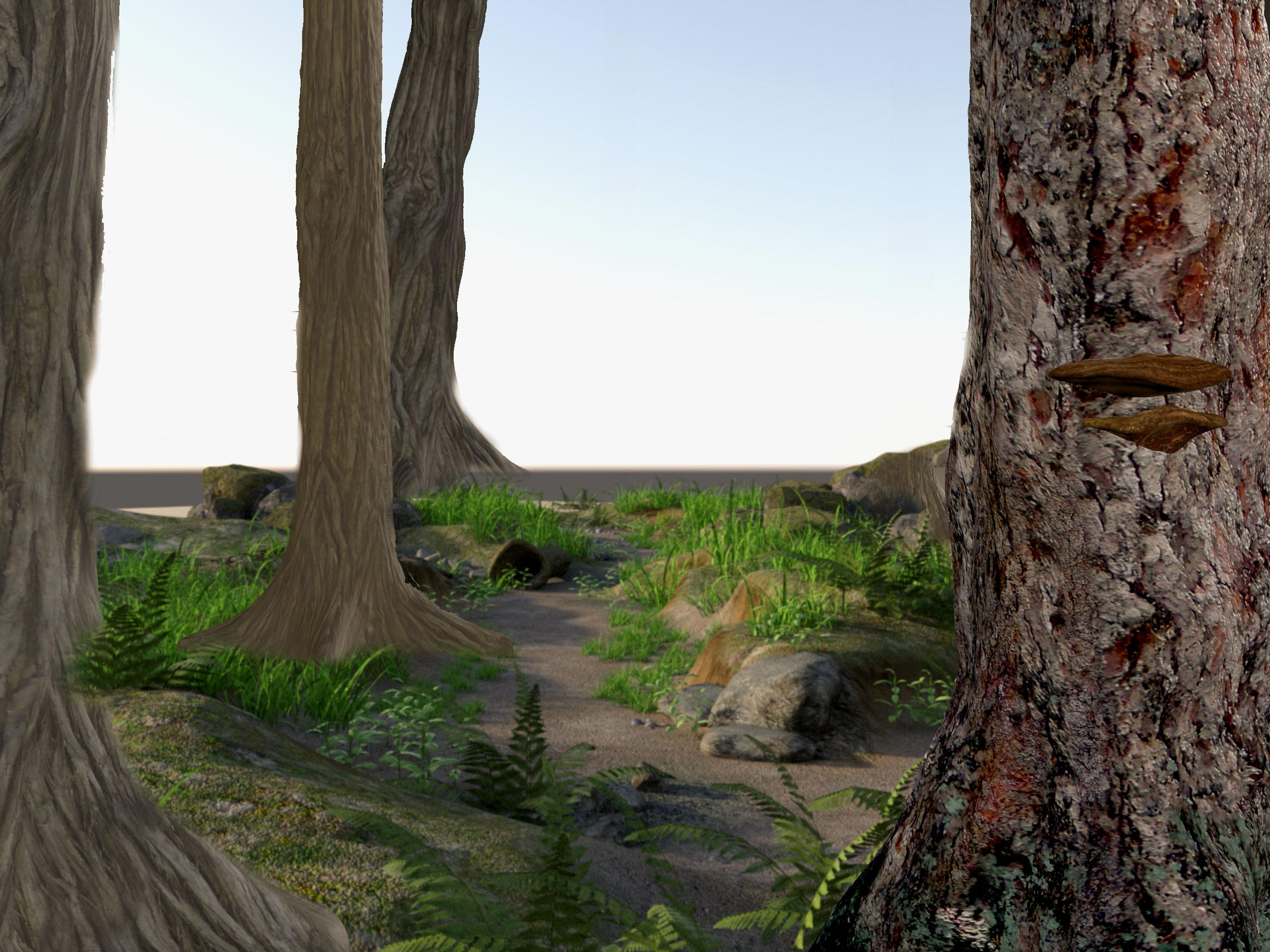 Forest Illustration, Rendering, Setting, Tree, Landscape, HQ Photo