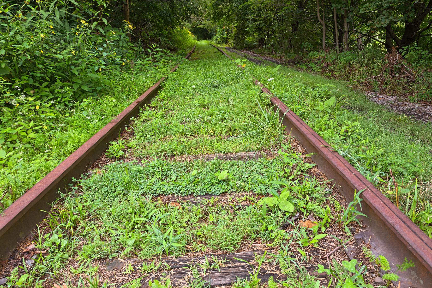 Forgotten tracks - hdr photo