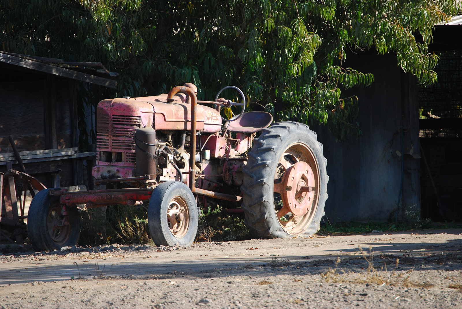 Forgotten Workhorse, Old, Rusted, Tractor, History, HQ Photo